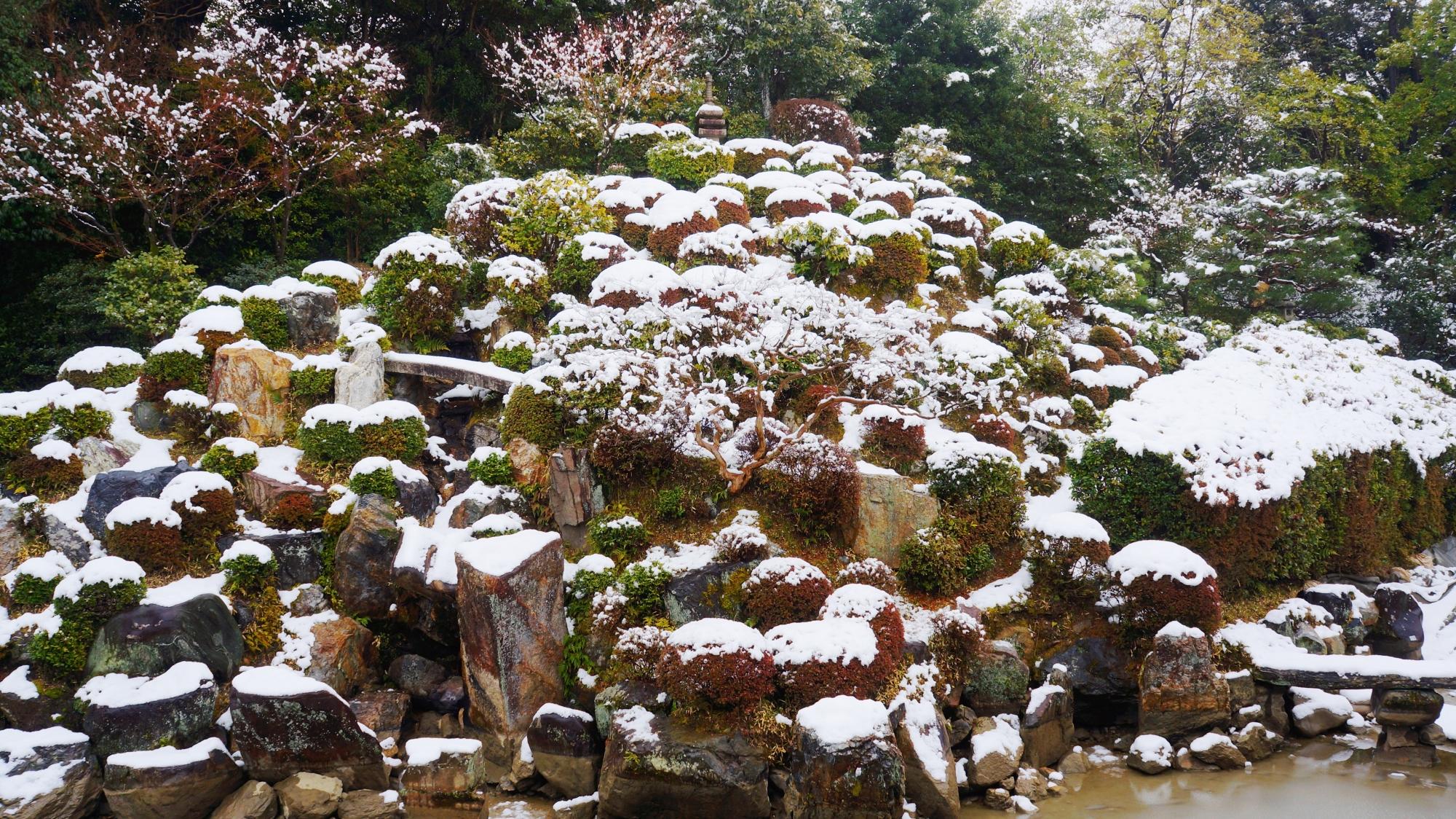 高画質 写真 名勝庭園 雪景色