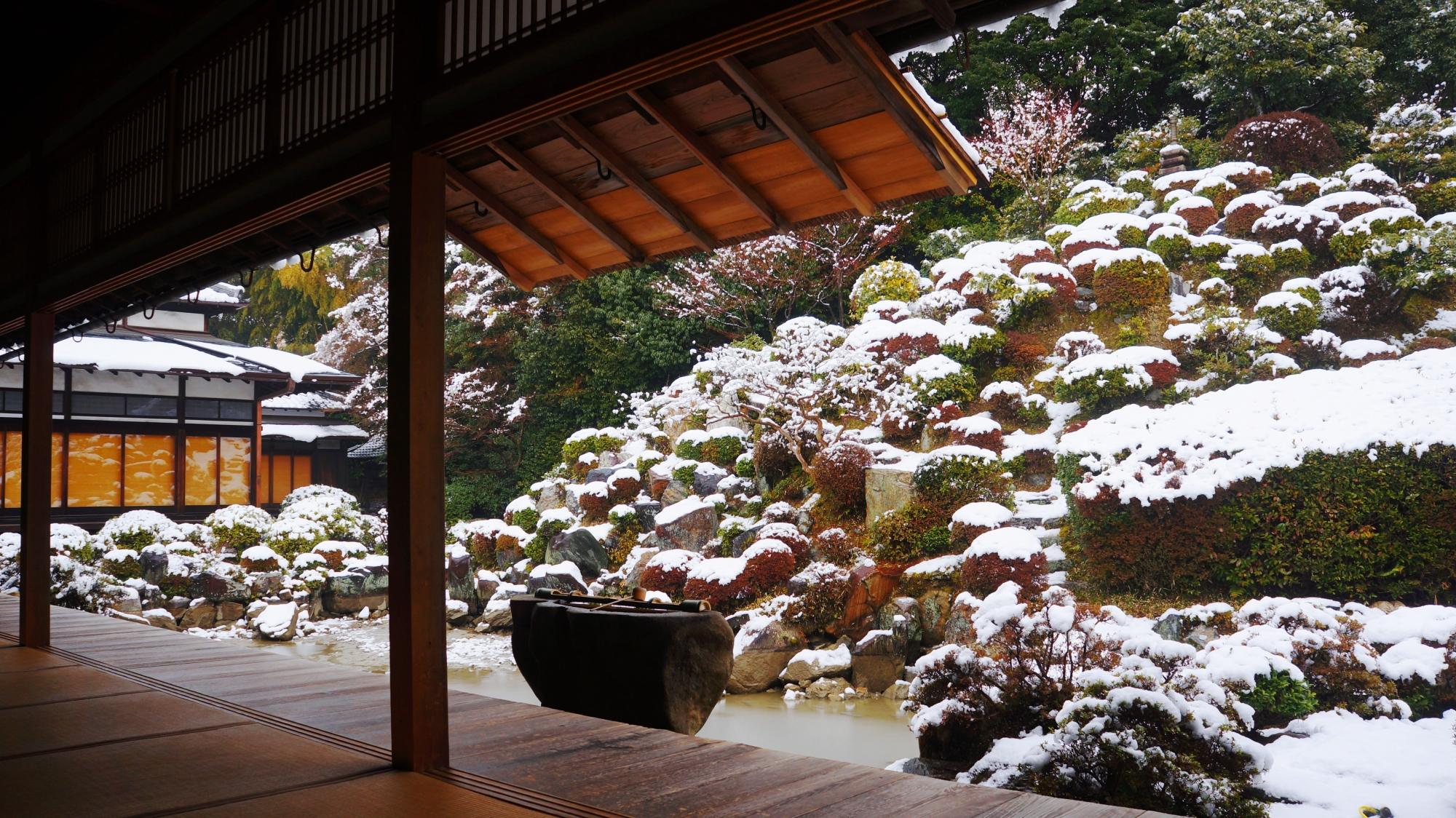 手水鉢にも趣きがある雪の智積院