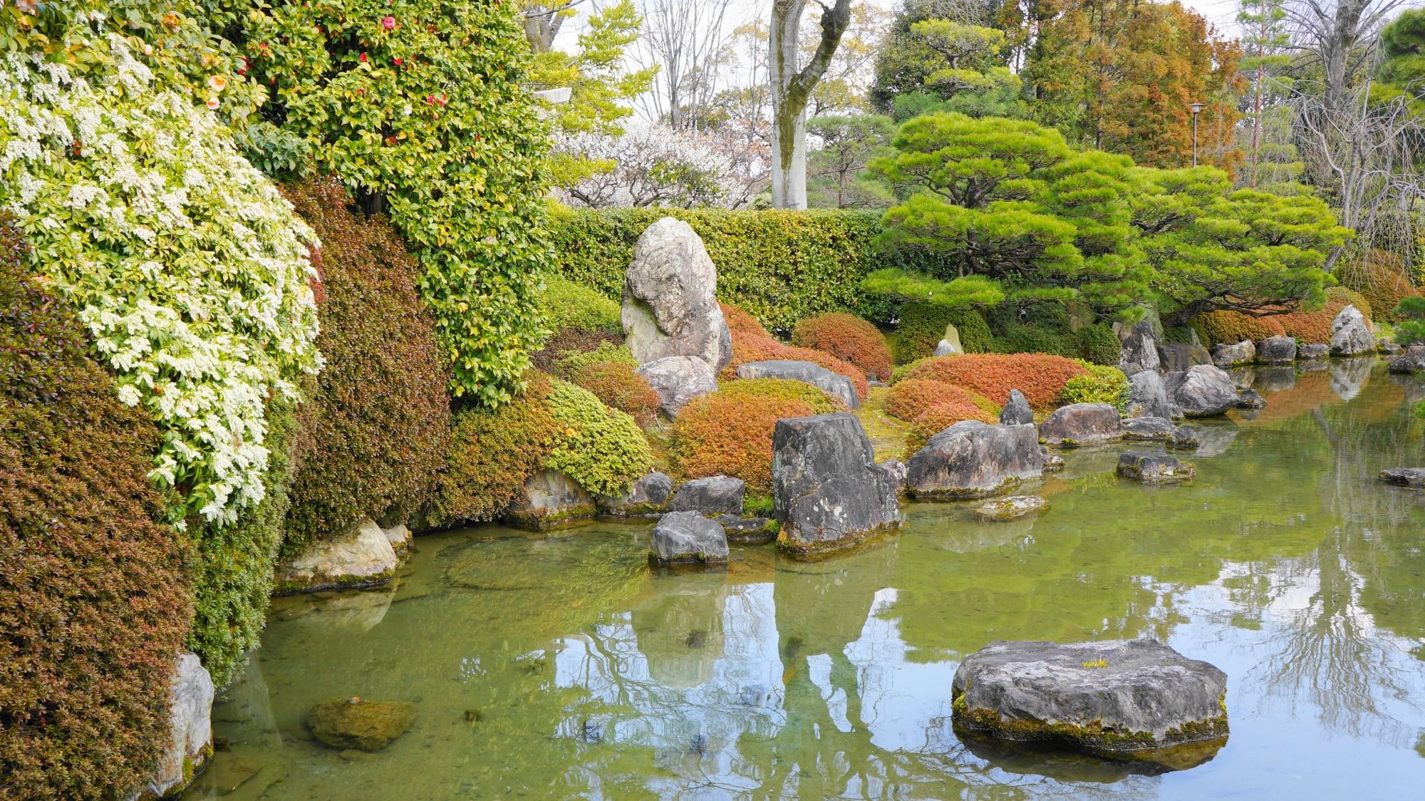 美しい池泉式庭園の室町の庭