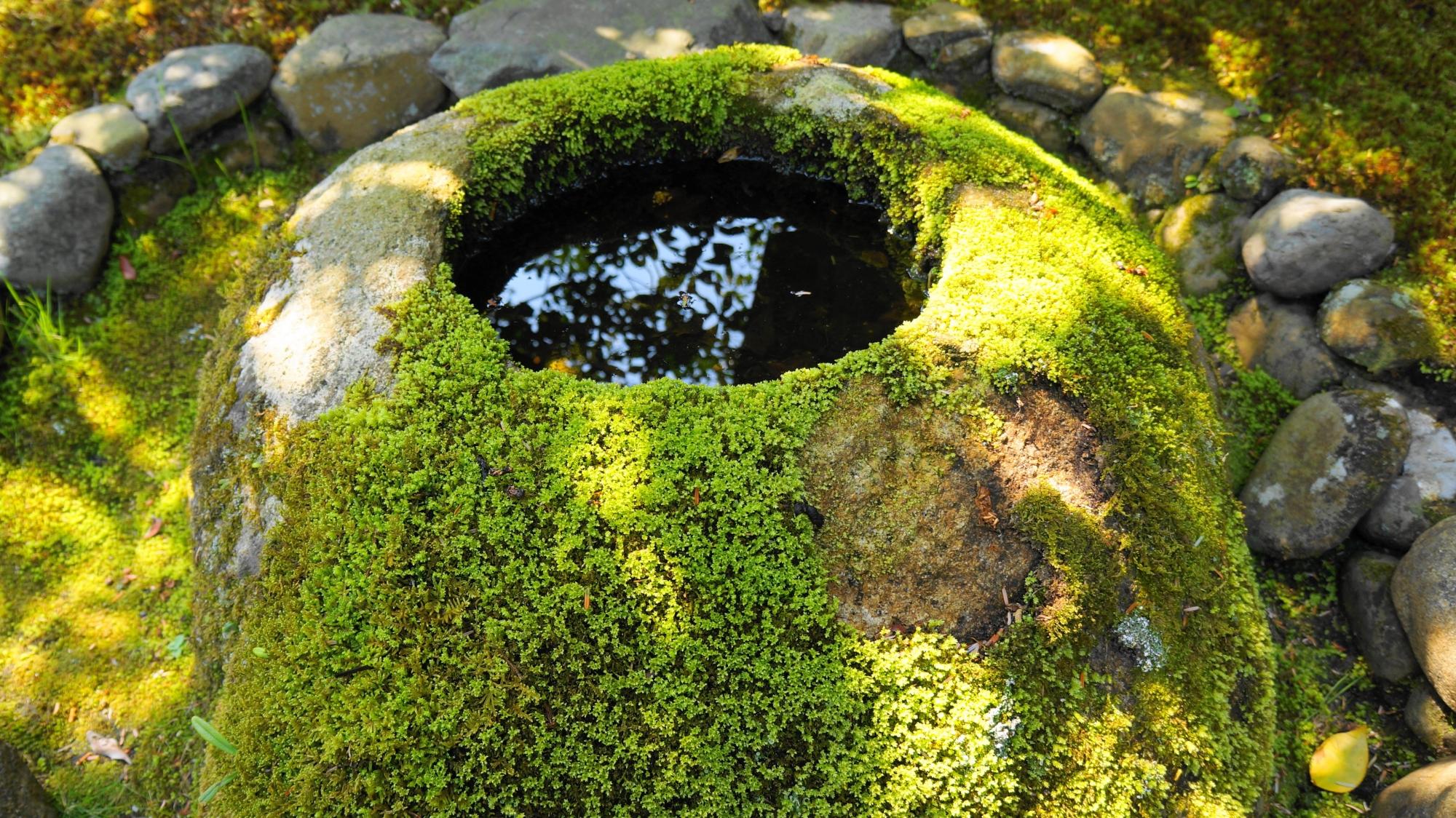 渉成園の情緒あふれる苔のつくばい