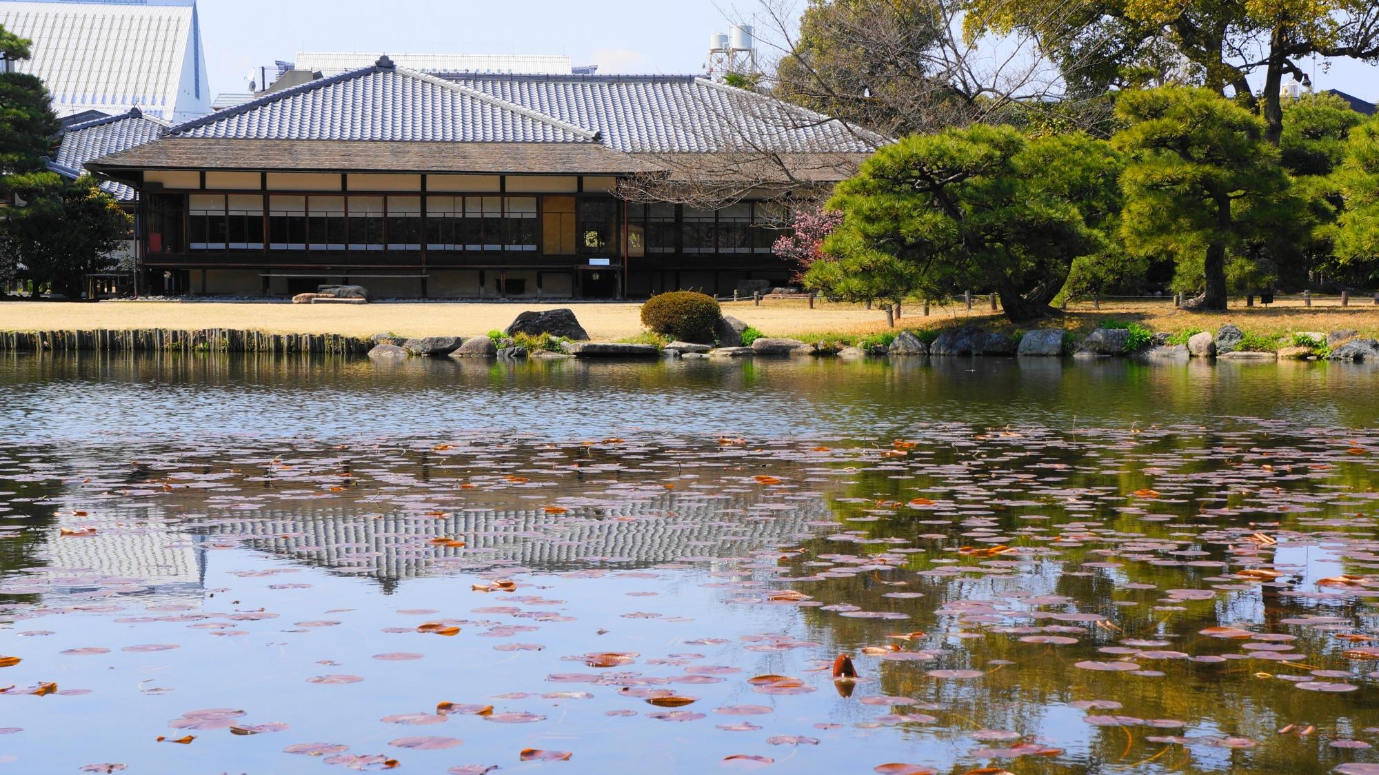 広々した庭園の中の印月池と閬風亭