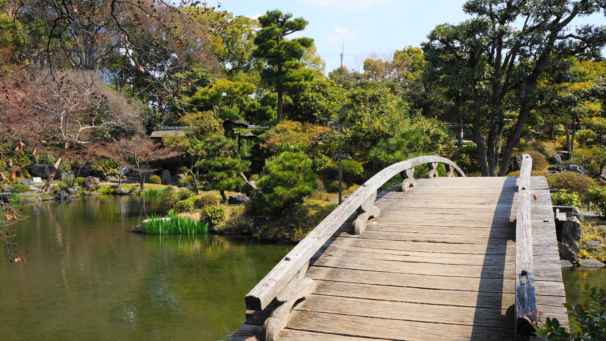 趣きある木造りの橋