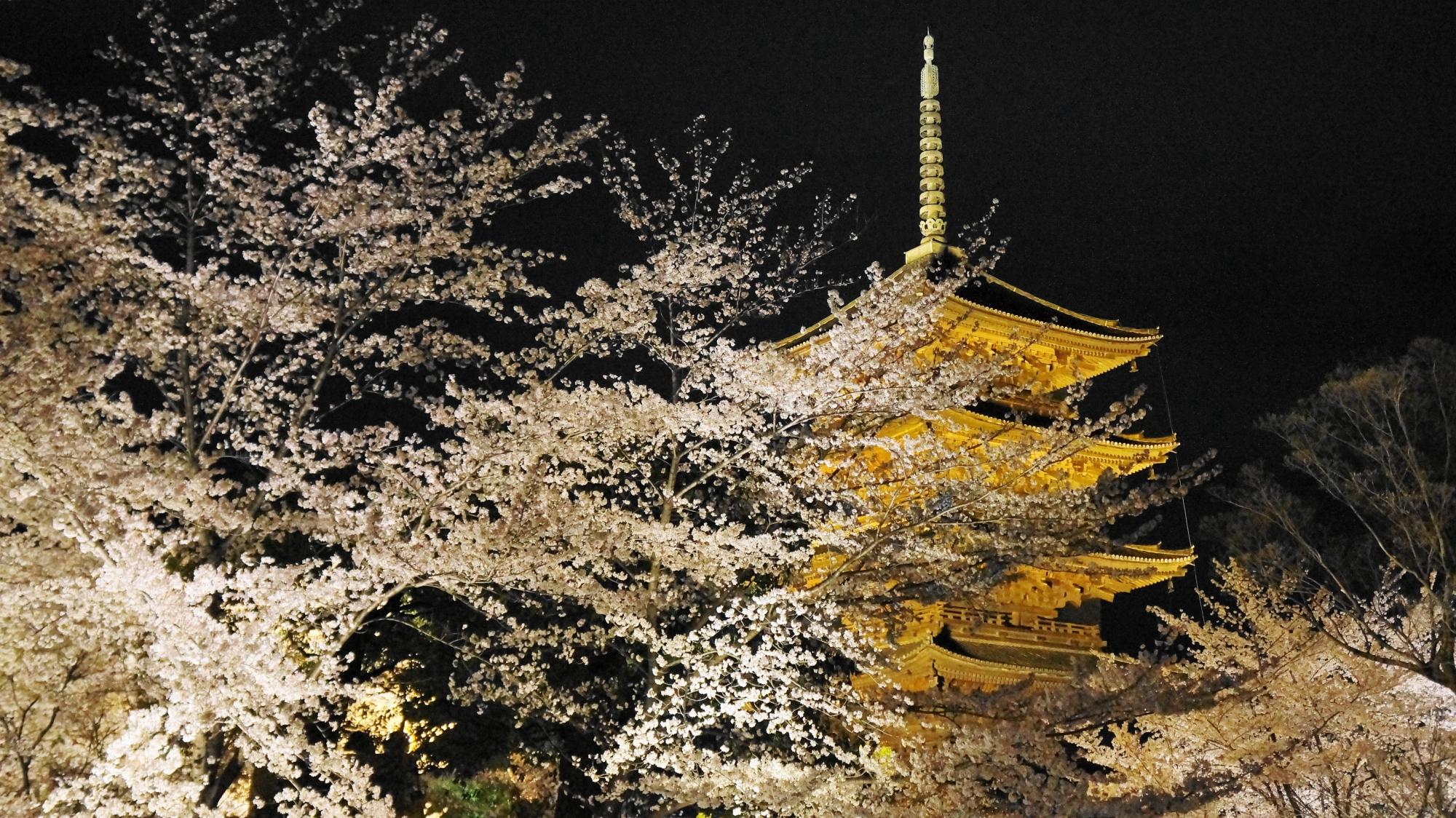満開の桜におおわれた五重塔