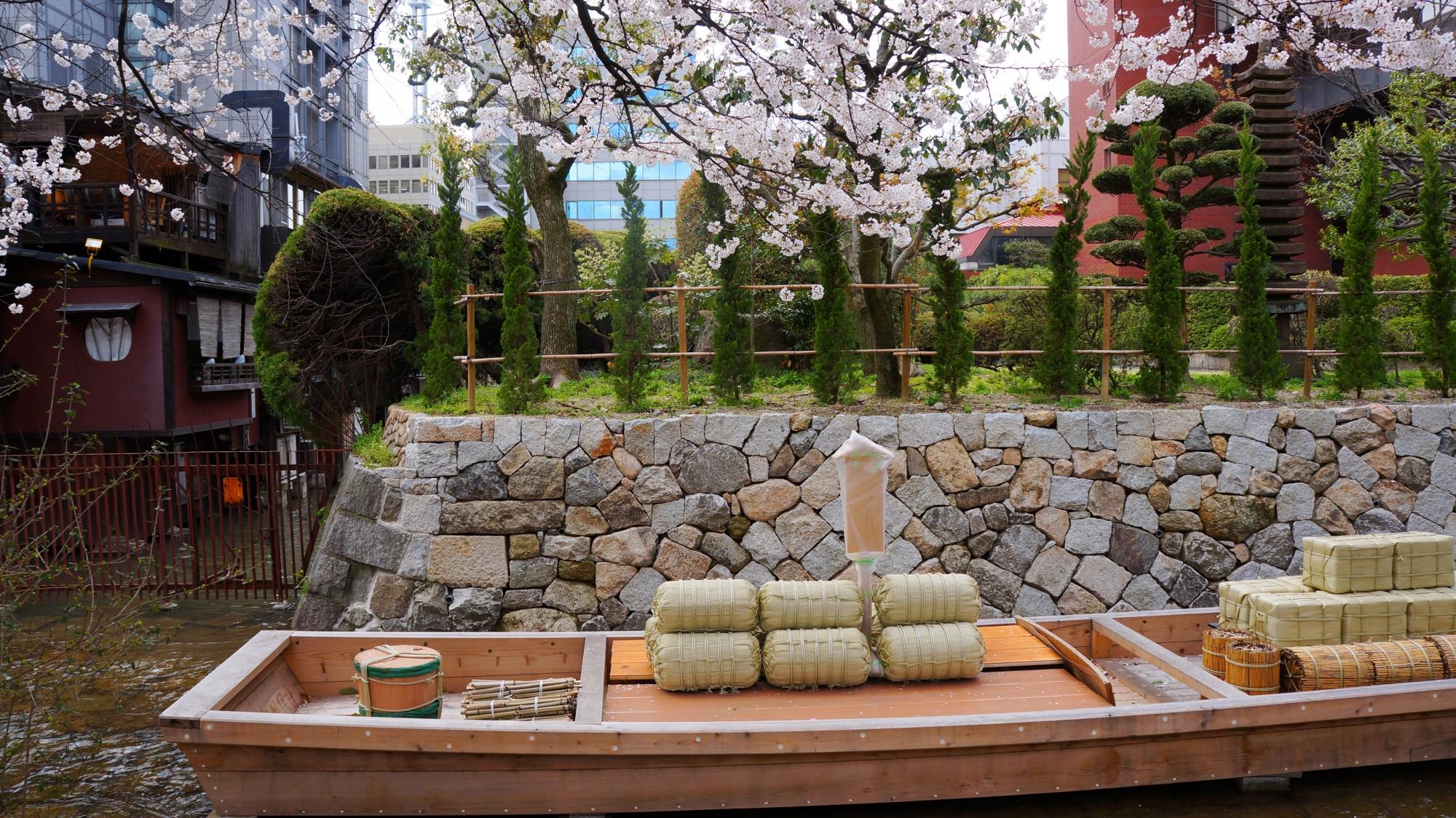 高瀬舟に降り注ぐ優雅な桜