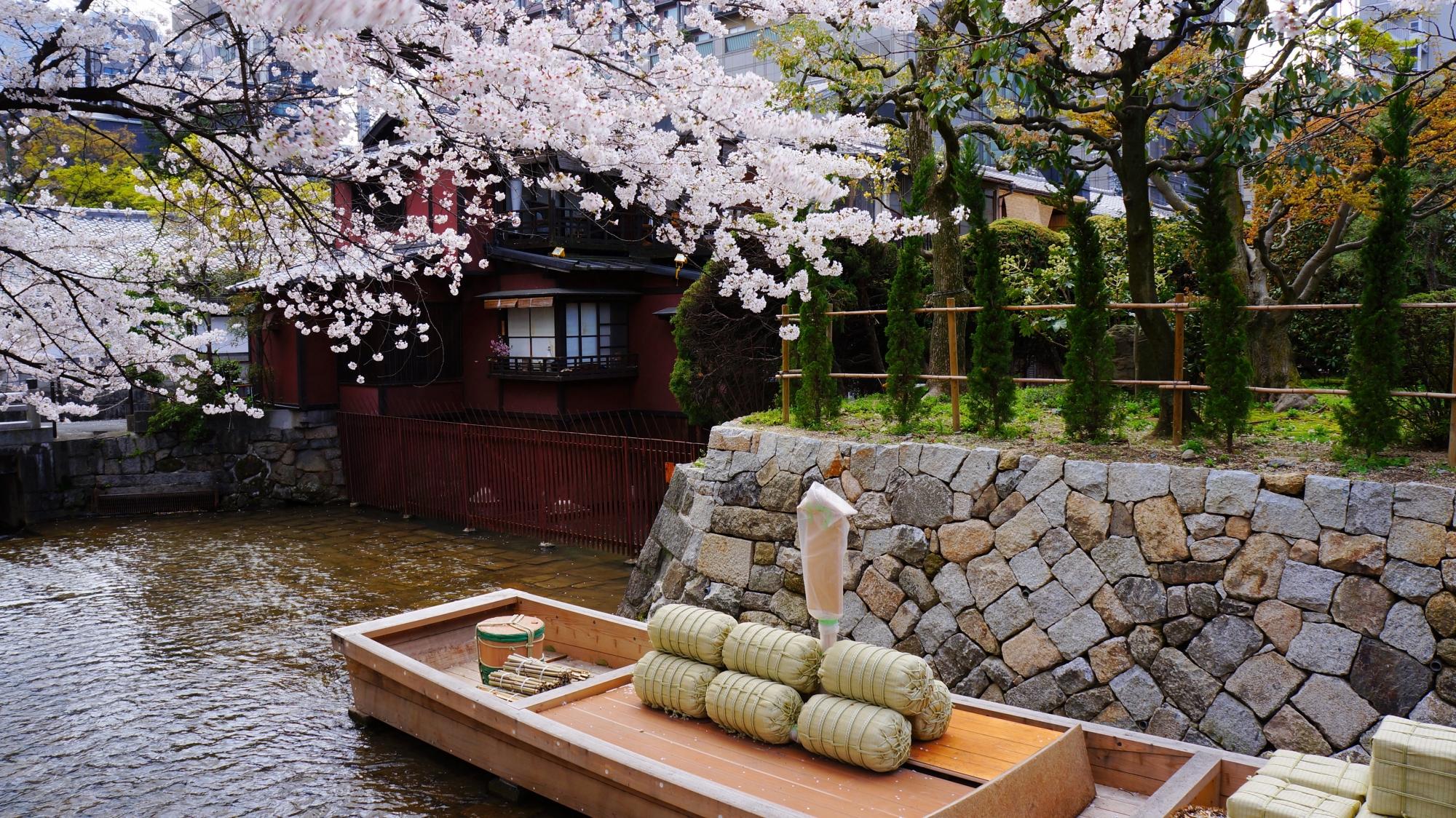 高瀬舟と水辺を華やかに彩る桜