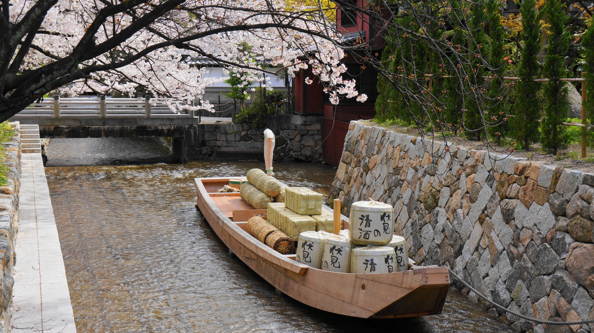 高瀬川一之船入にとまる高瀬舟と桜