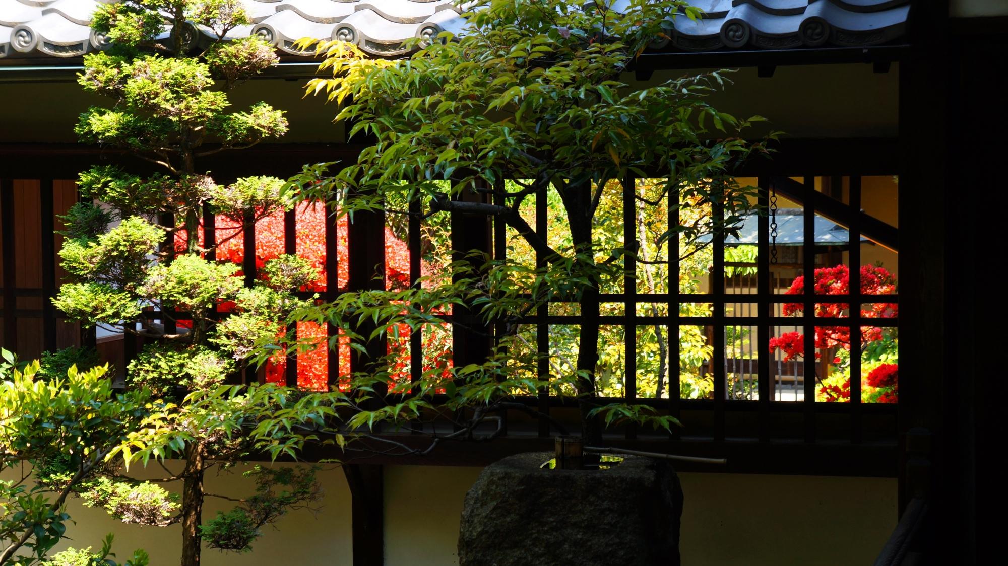 正伝永源院の奥に茶室のある北側の庭園