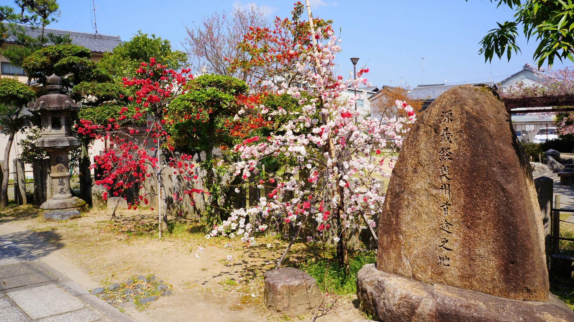 「源義経奥州首途之地碑」と源平枝垂れ桃