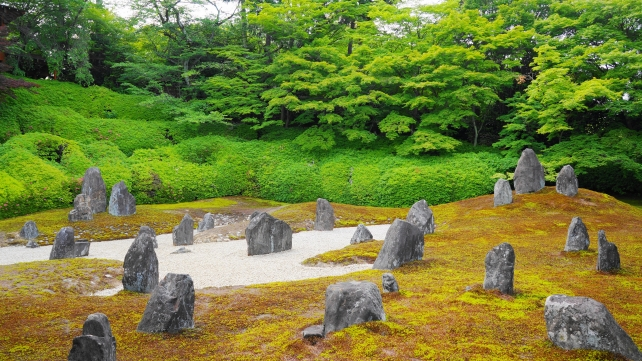 Komyo-in Temple Kyoto fresh green blue maple moss 波心庭