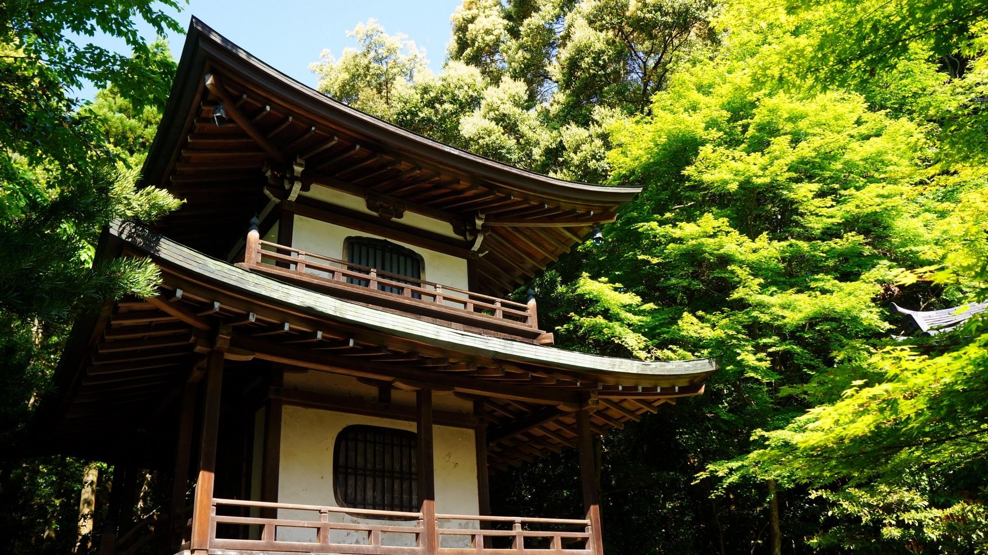 穴場のお寺の栖賢寺の宝塔と眩しい新緑