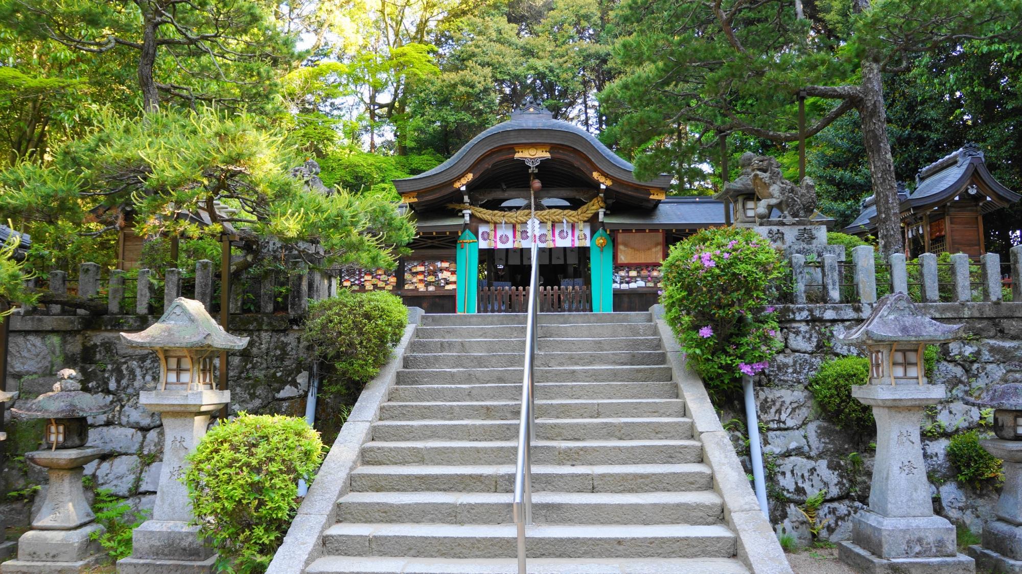 鷺森神社(さぎのもり神社) 新緑と青もみじ 京都洛北の眩しい緑