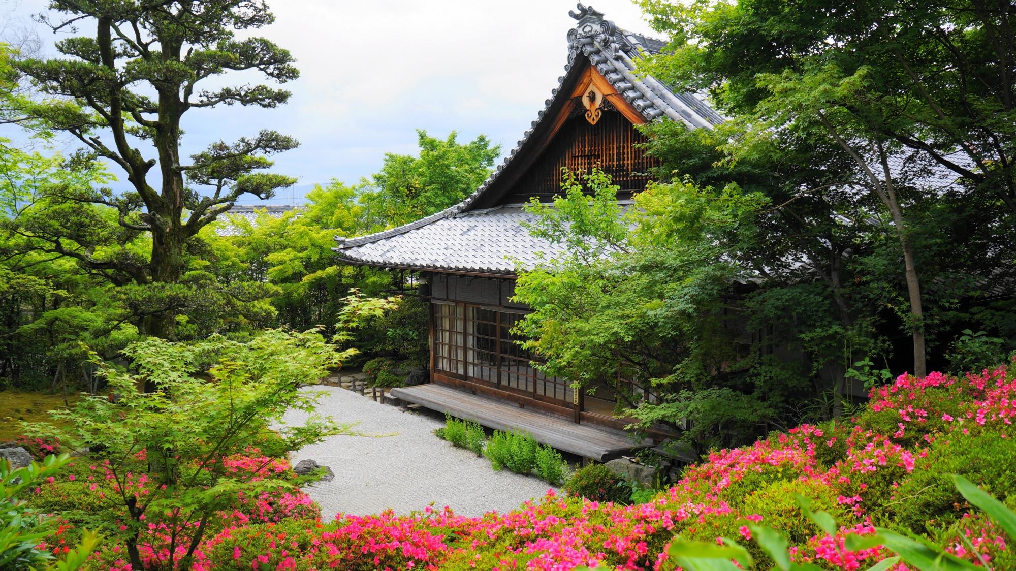 金福寺の春から初夏にかけての絵になる方丈とサツキの風景