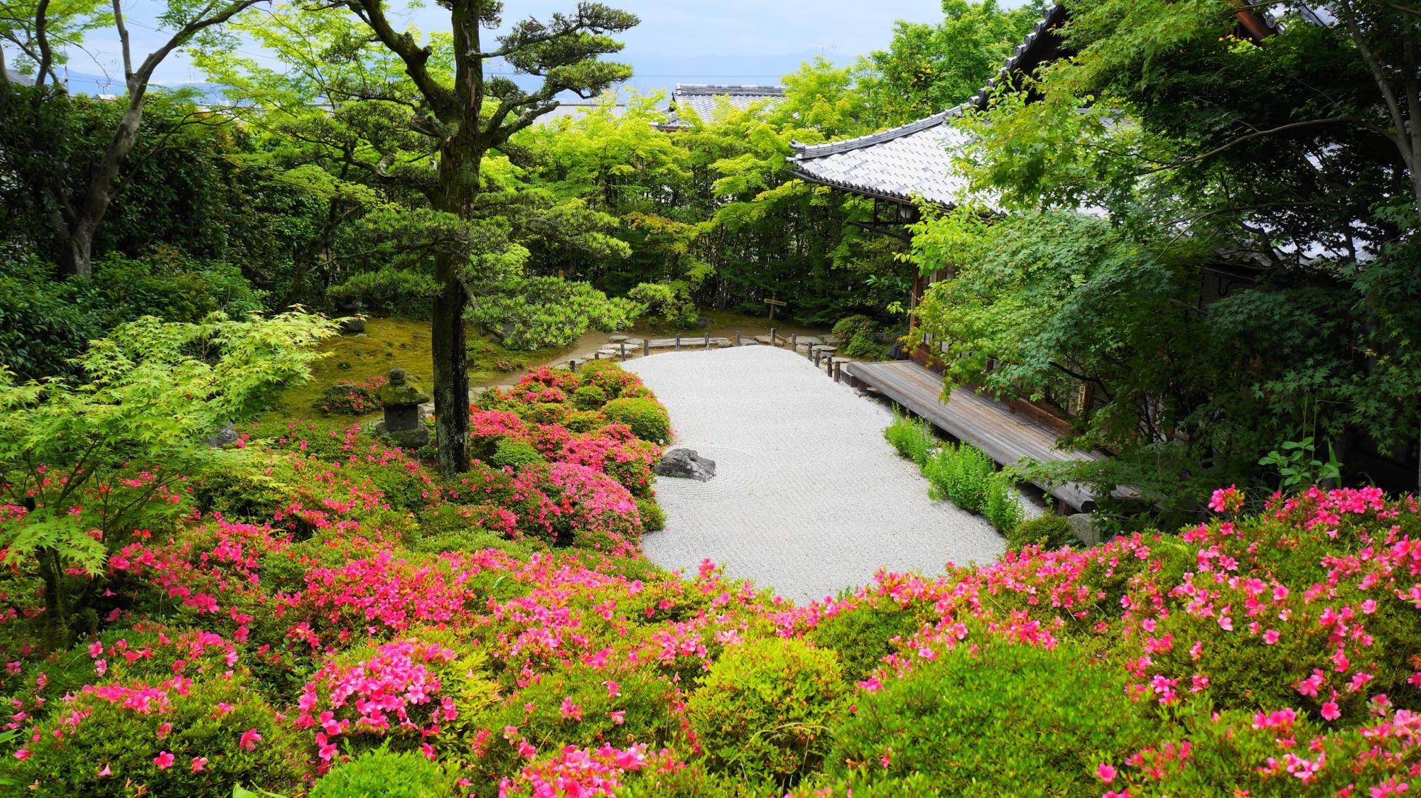 上からの眺めた違った雰囲気が楽しめる庭園とサツキ