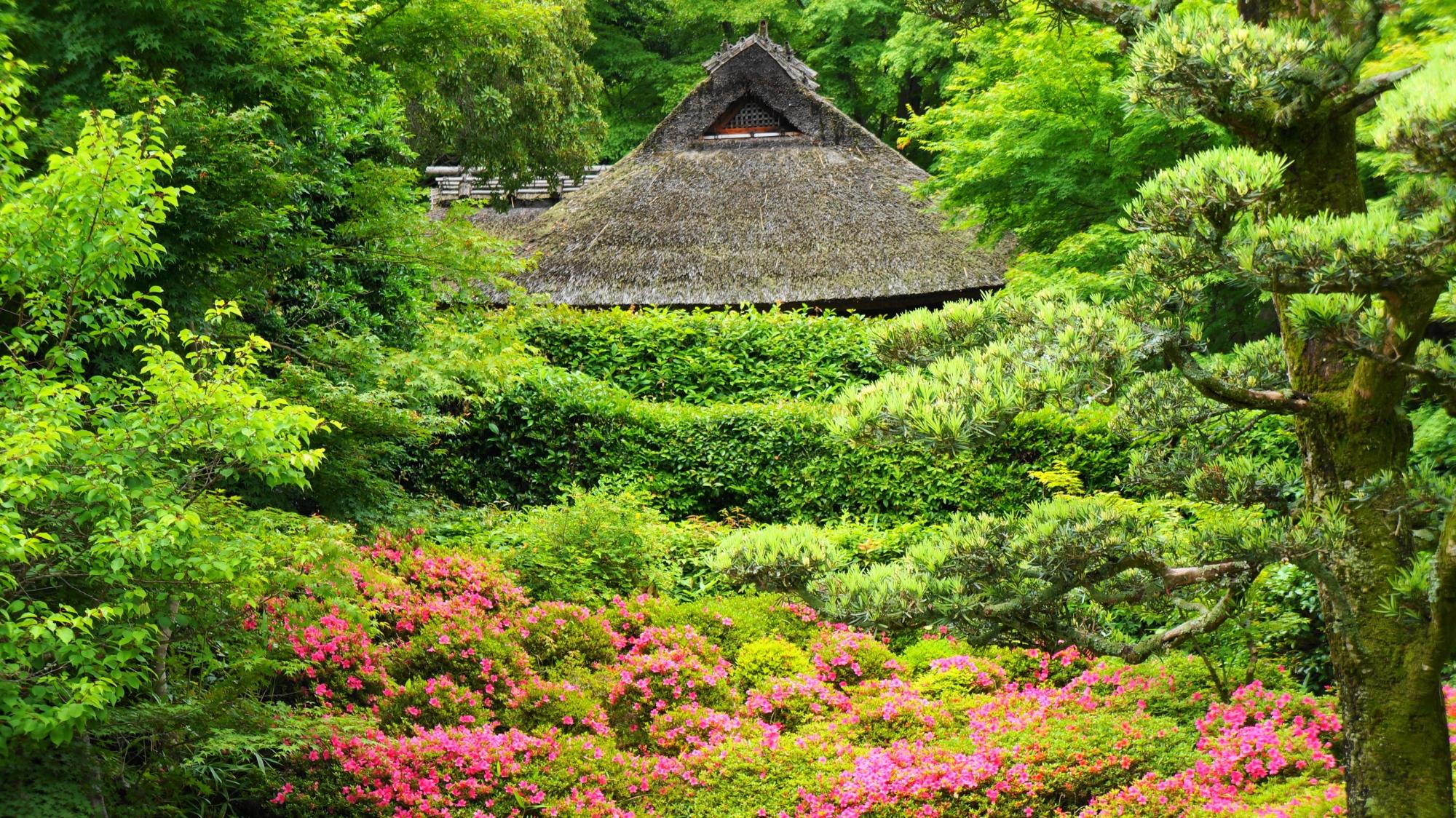 与謝蕪村や松尾芭蕉ゆかりのお寺としても知られる金福寺