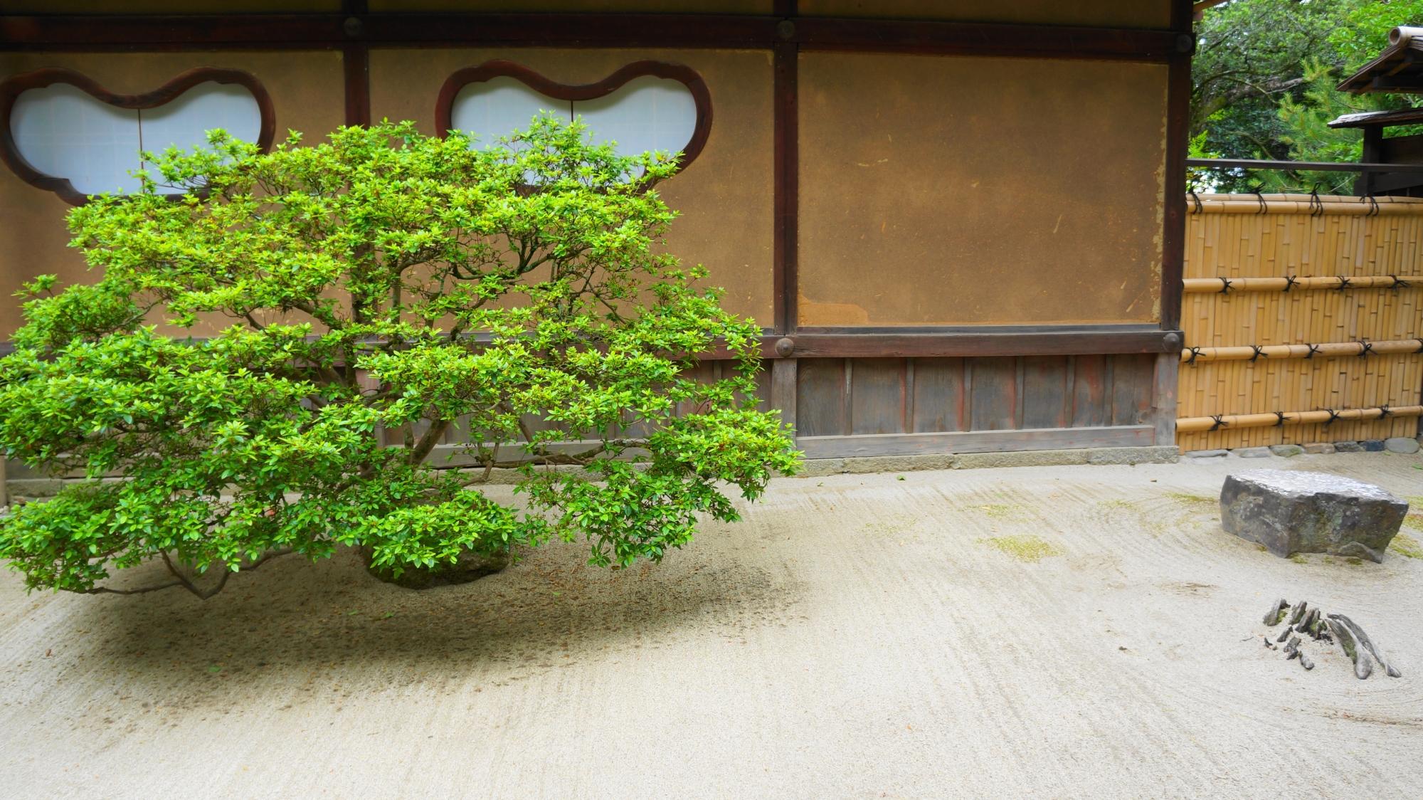 詩仙堂の特徴的な窓とキリシマツツジの緑の刈り込み