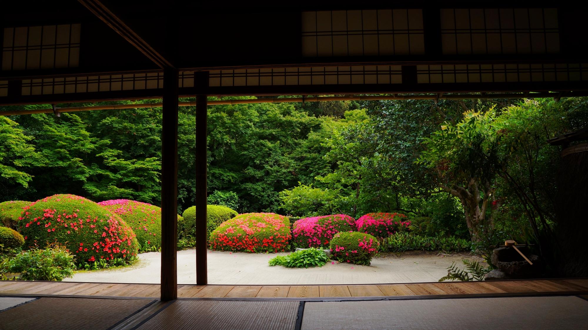 詩仙堂の極上の額縁のサツキの庭園