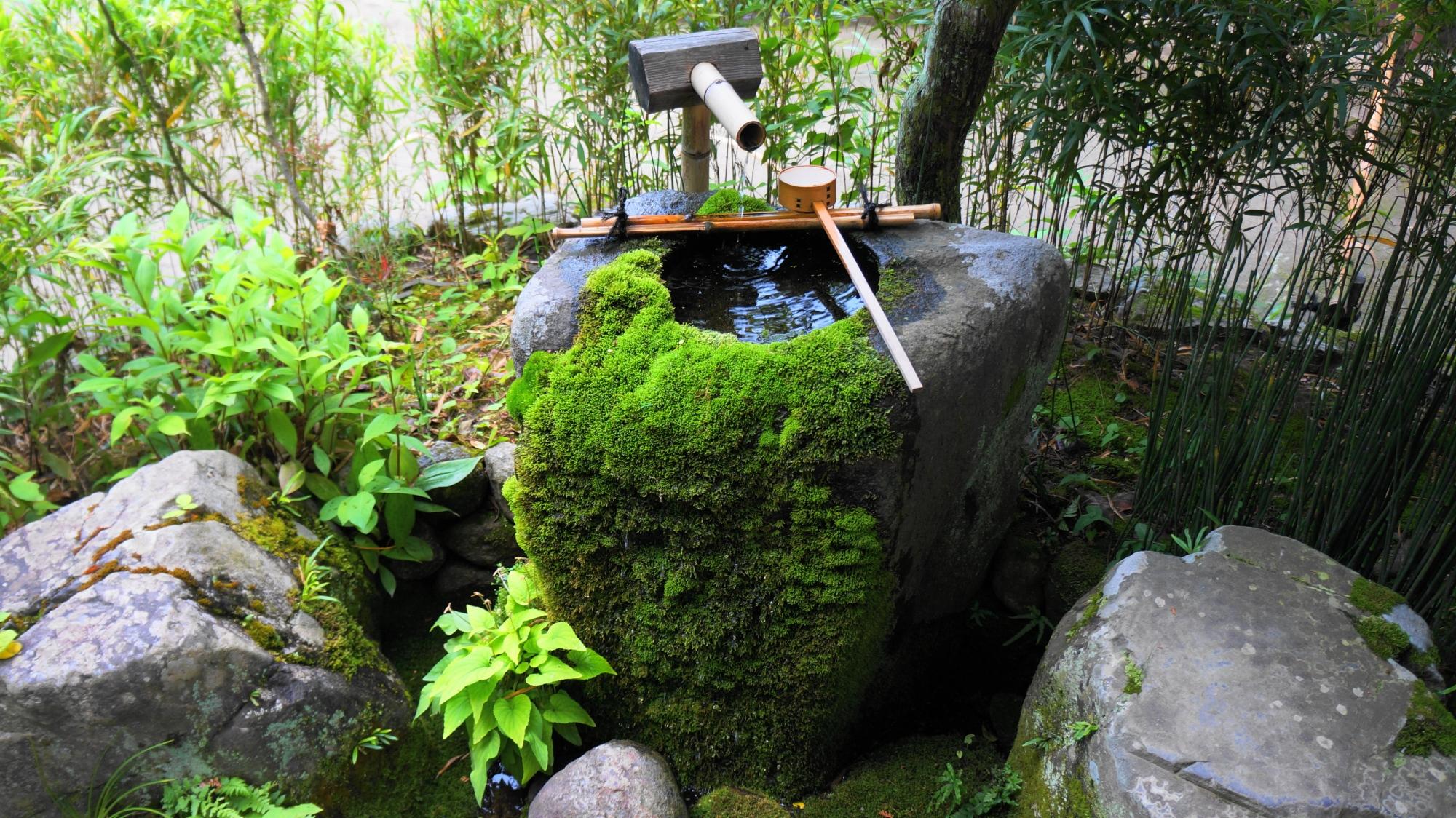 詩仙堂の静かな境内に佇む風情ある手水鉢