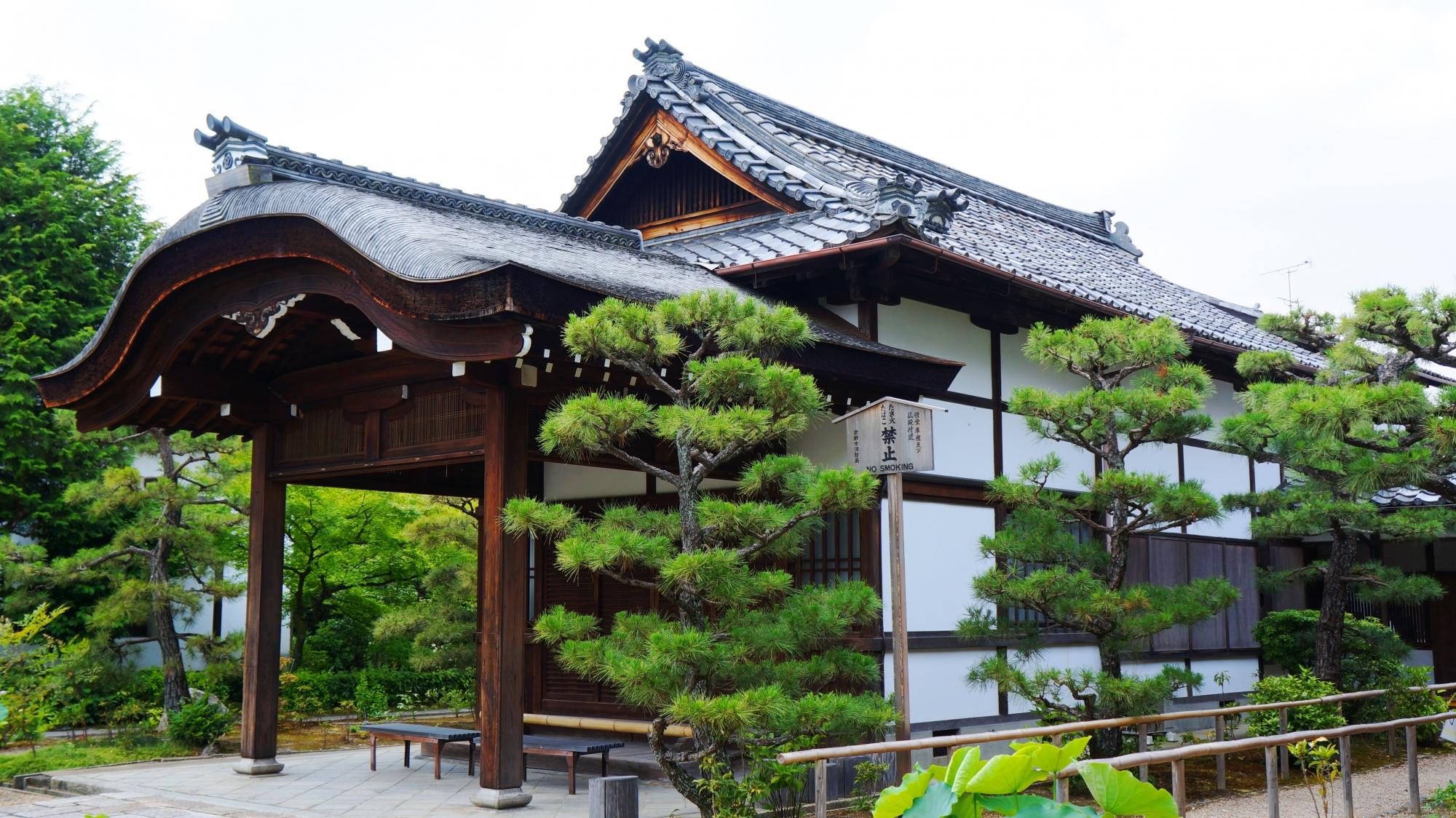 緑の松が上品に演出する庫裡前の大玄関
