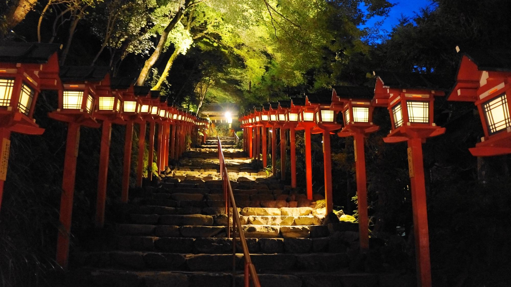 貴船神社 七夕笹飾りライトアップ 幻想的な灯りと青もみじ