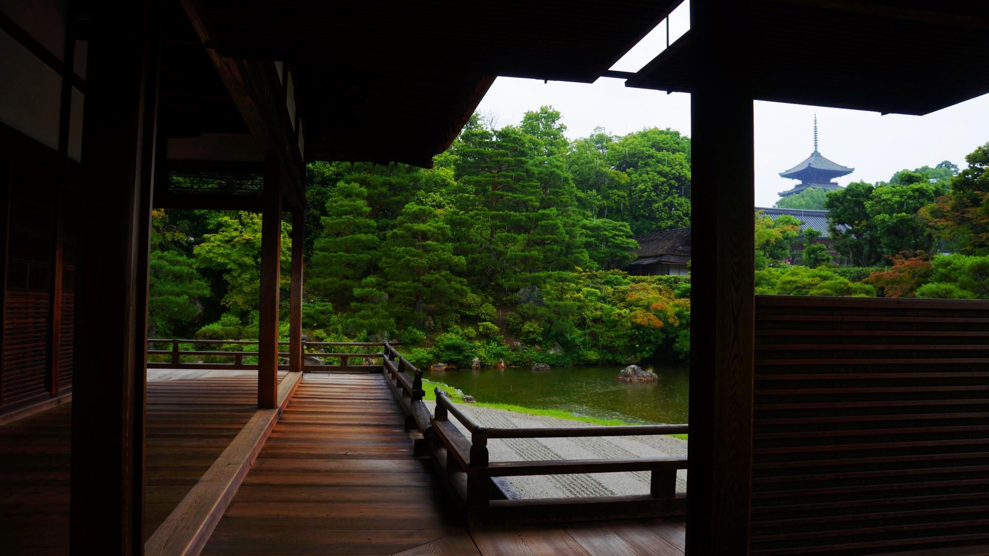 仁和寺 青もみじと新緑と雨 美しい緑の世界