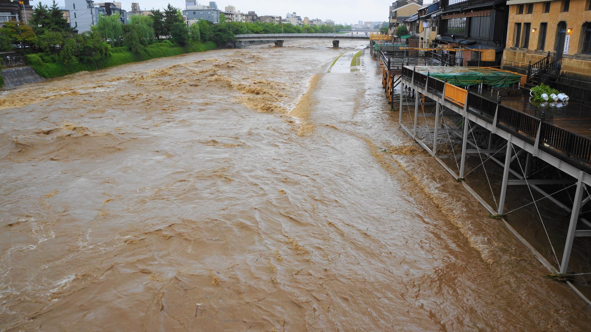 みそそぎ川との境目がなくなった水位が上昇した鴨川