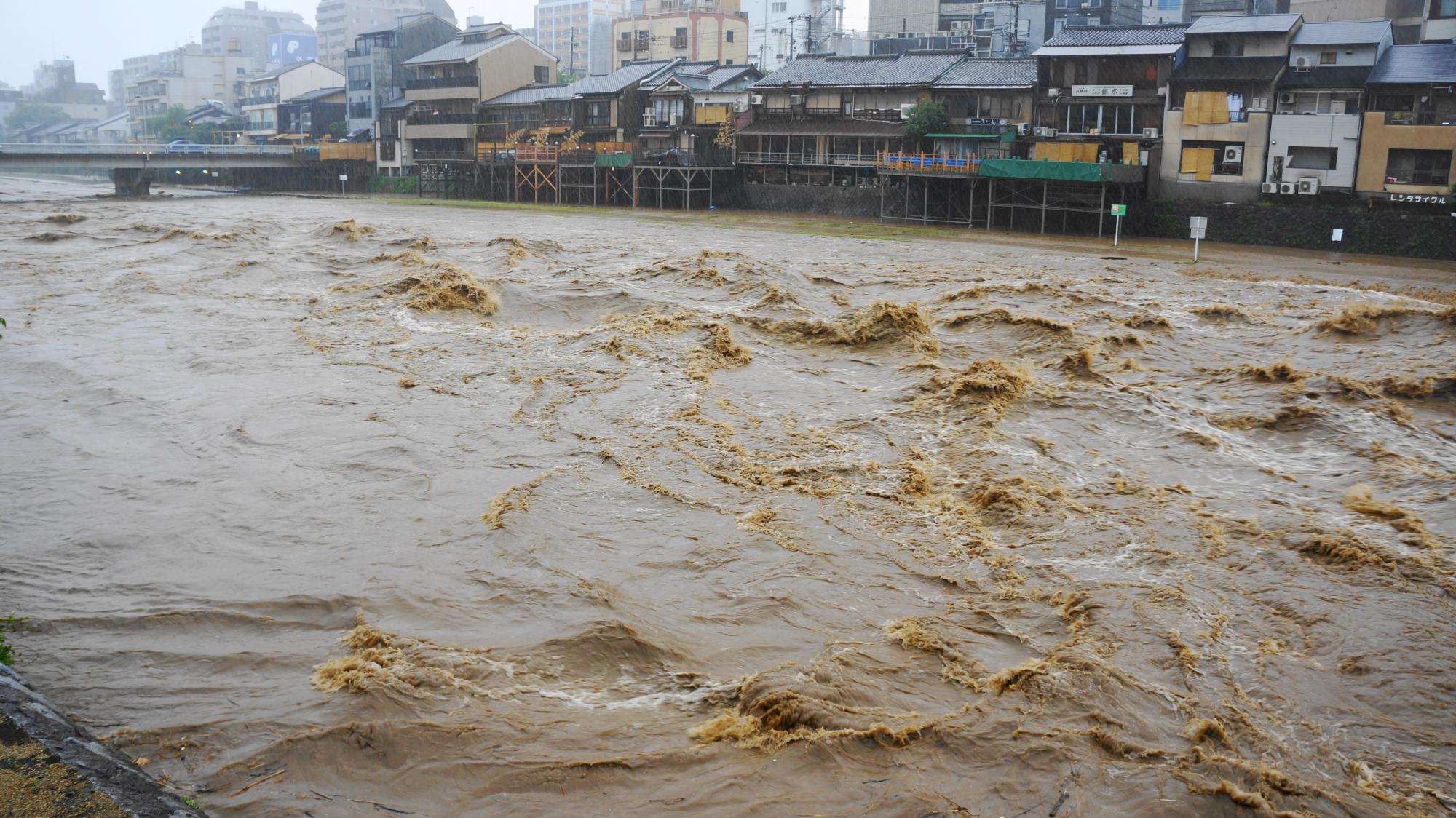 茶色の水がうねって波打つ鴨川