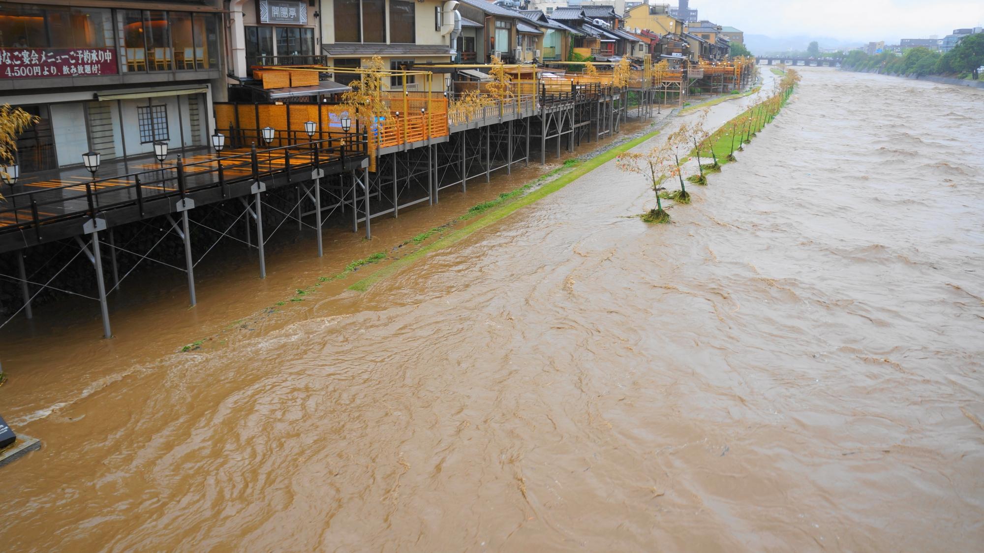 川床のすぐ下まで大量の水が迫る濁流の鴨川