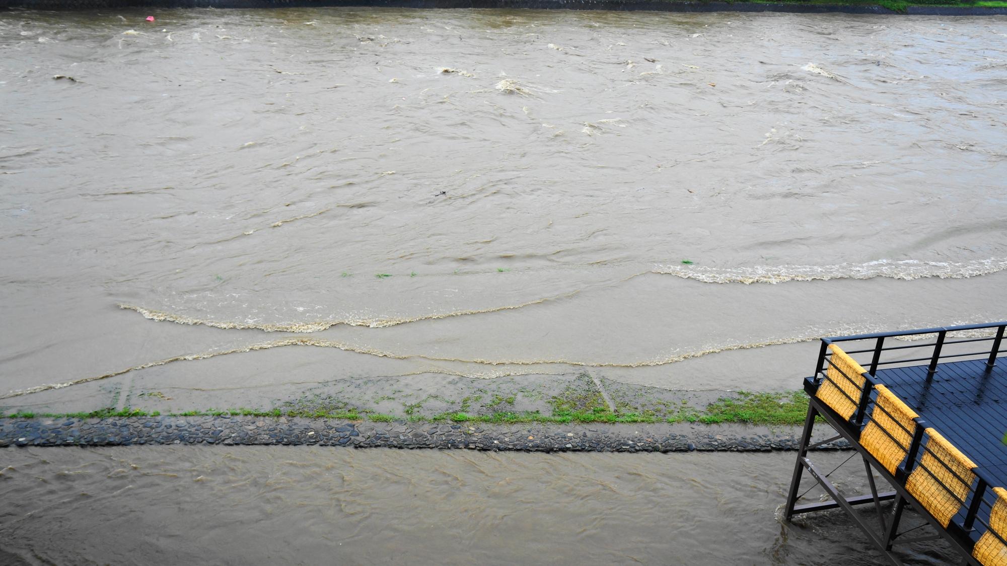 河川敷が茶色い水に浸かってしまっている鴨川
