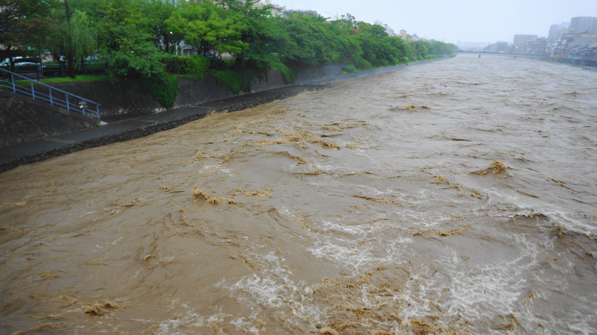 普段の長閑な鴨川からは想像もできない2014年8月10日の濁流の鴨川
