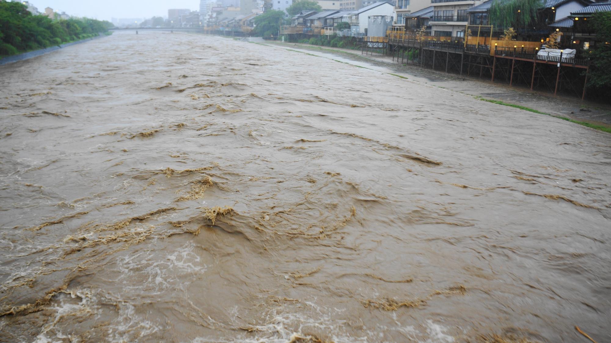 勢いよく大量の濁った水が下流へと流れていく鴨川