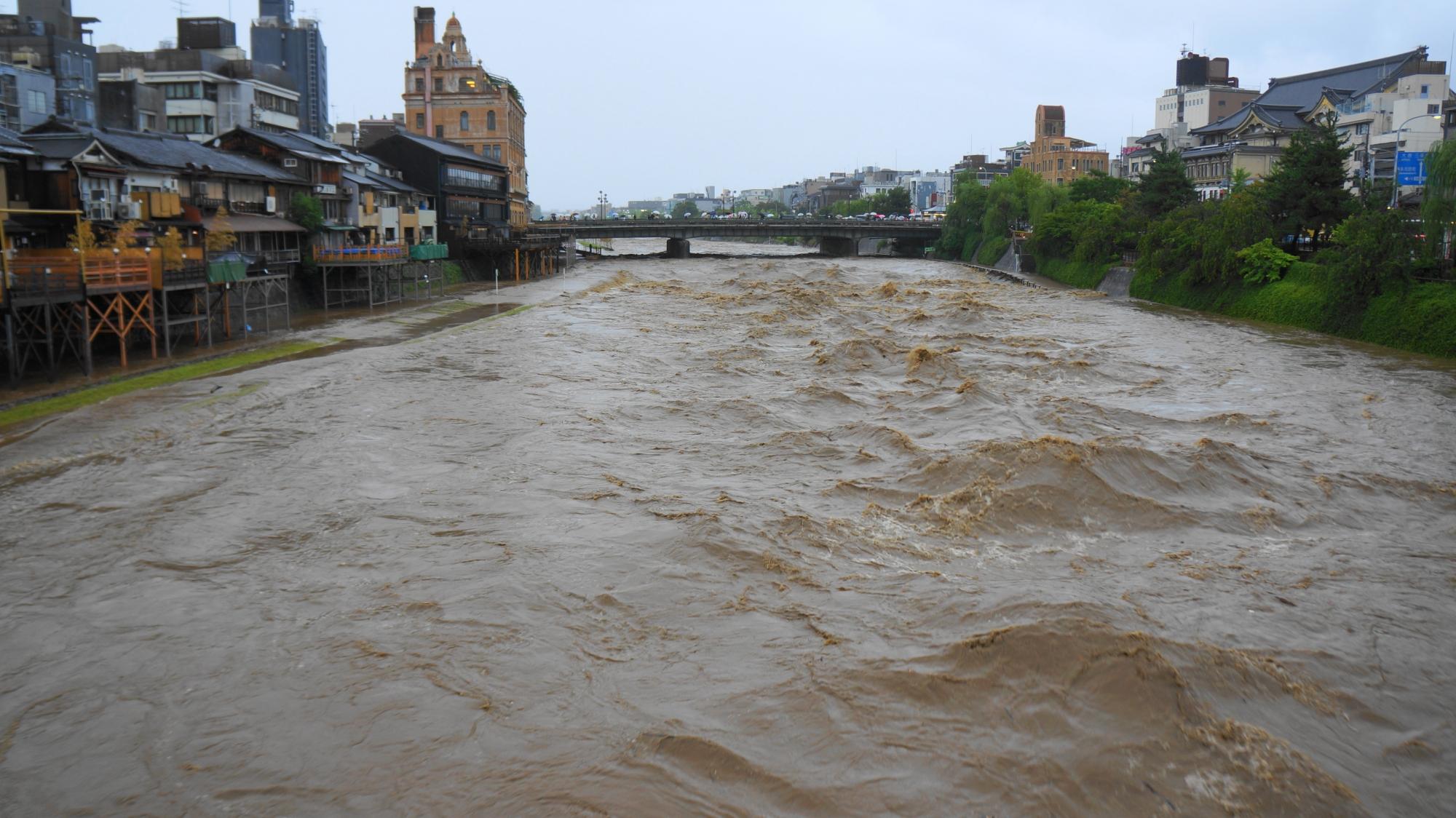 台風の大雨の脅威にさらされた2014年8月10日の増水した鴨川