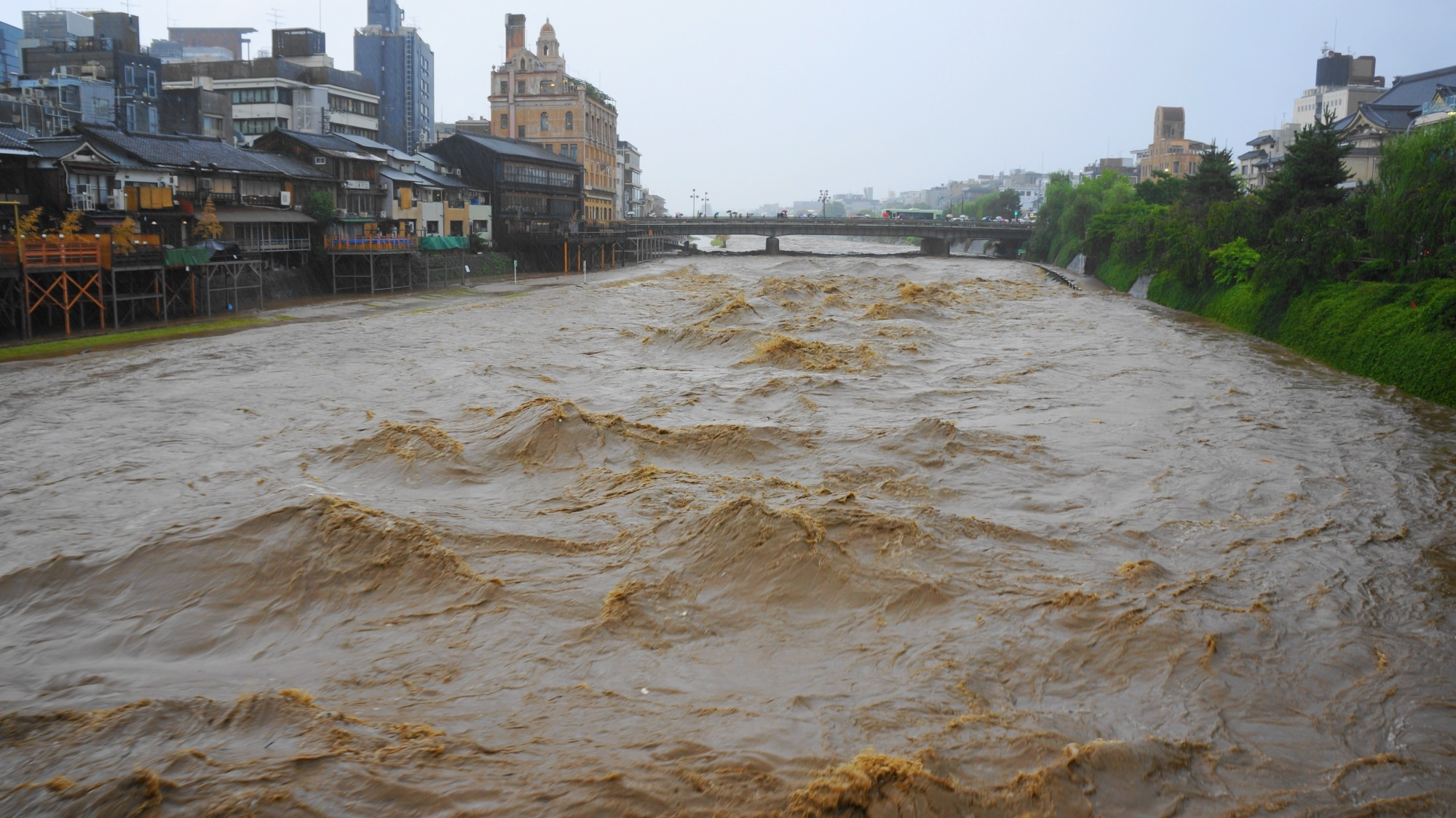 台風の大雨で増水した鴨川