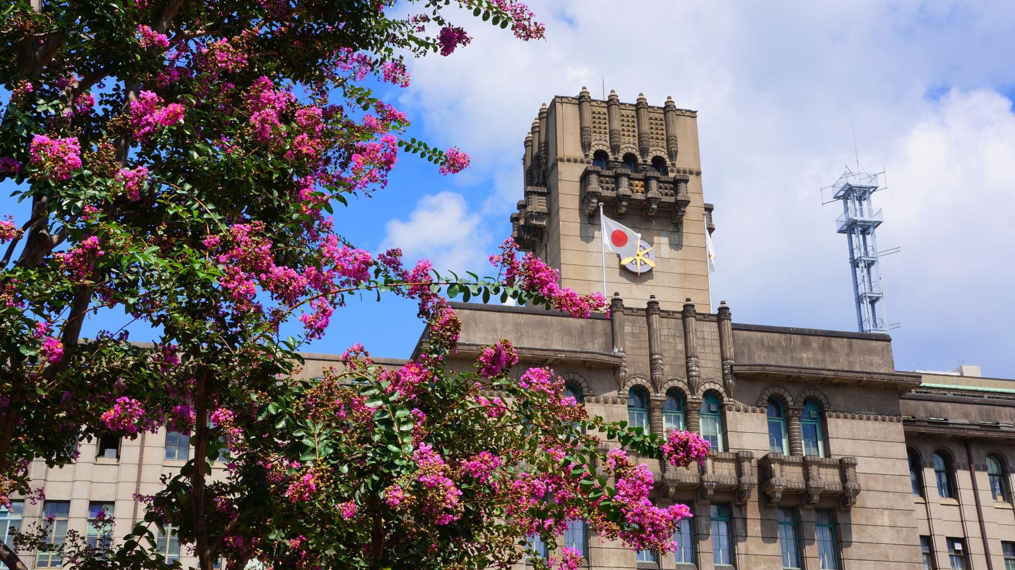 ビビッドなピンクに彩られるレトロな京都市役所
