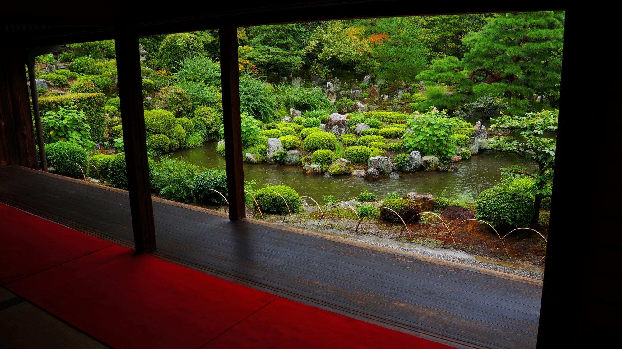等持院 青もみじと雨 深い緑の名庭