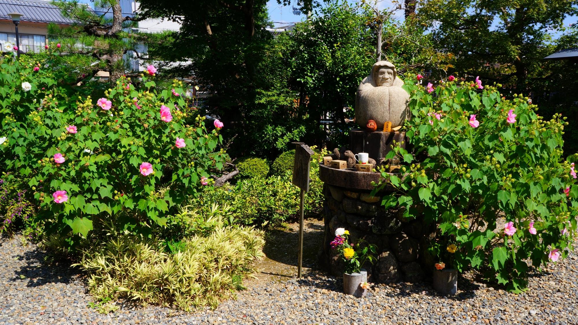 芙蓉の花につつつまれた法輪寺の達磨像