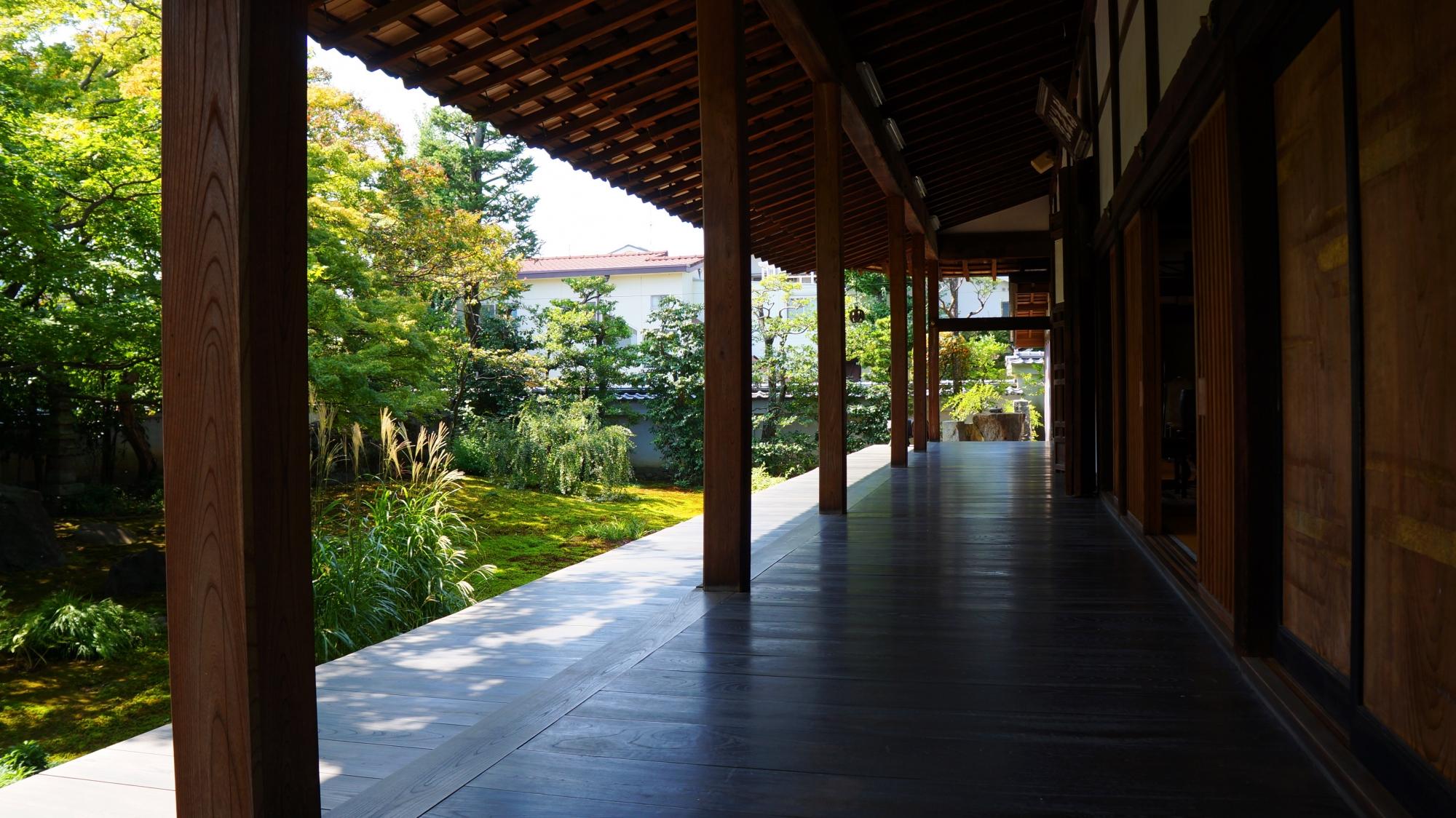 法輪寺(達磨寺)の本堂前庭園(方丈庭園)