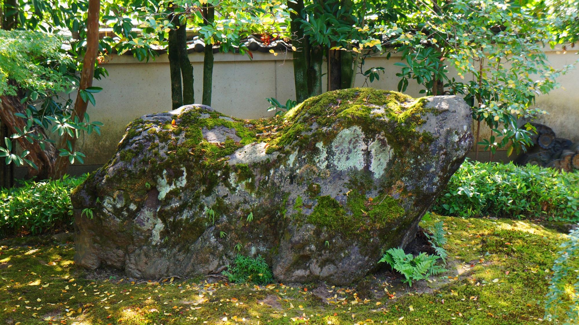 強くも優しいライオンさんの法輪寺(達磨寺)の苔の生える獅子岩