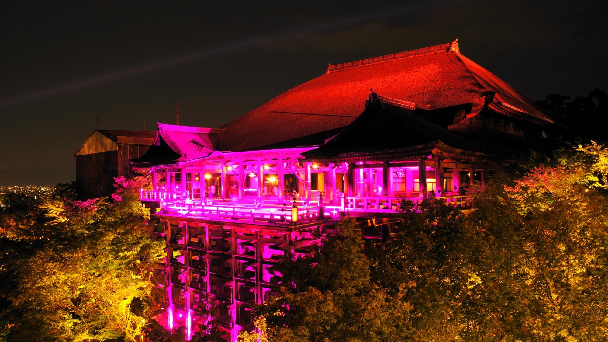 ピンクの清水寺 京都の夜を幻想的に灯す ピンクリボン活動
