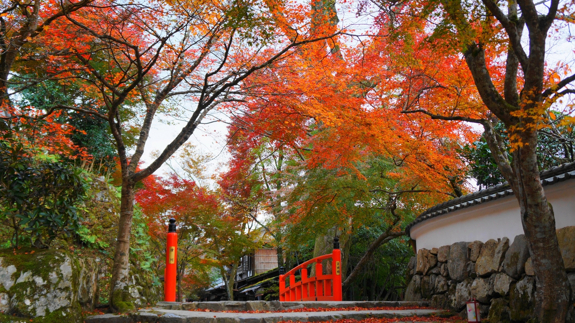 大原 紅葉 律川と勝手神社の秋の彩り