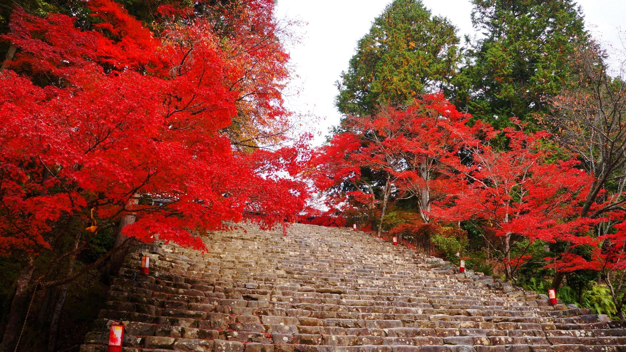 秋の神護寺の一番有名な紅葉
