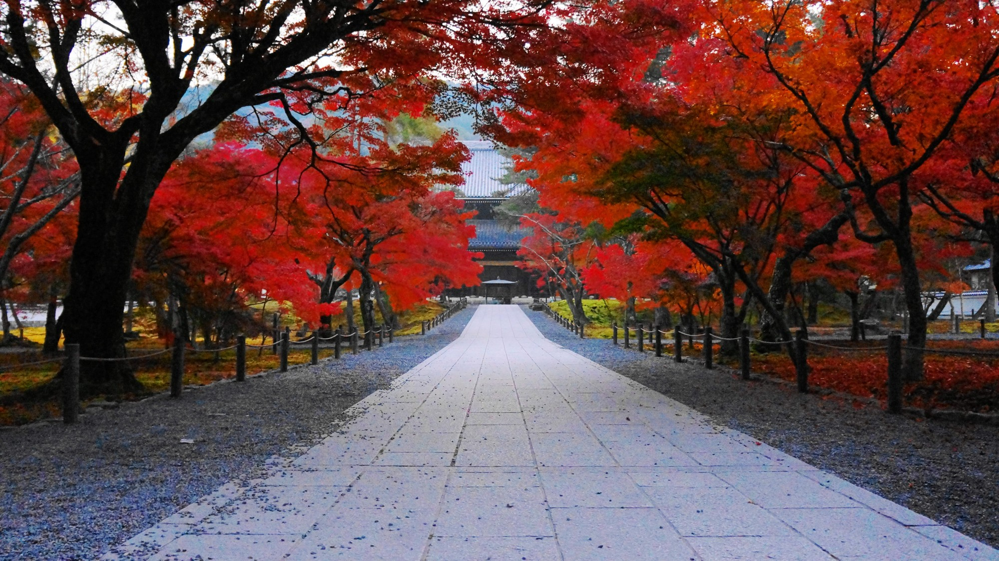 流石は名高い京都の紅葉の名所の南禅寺