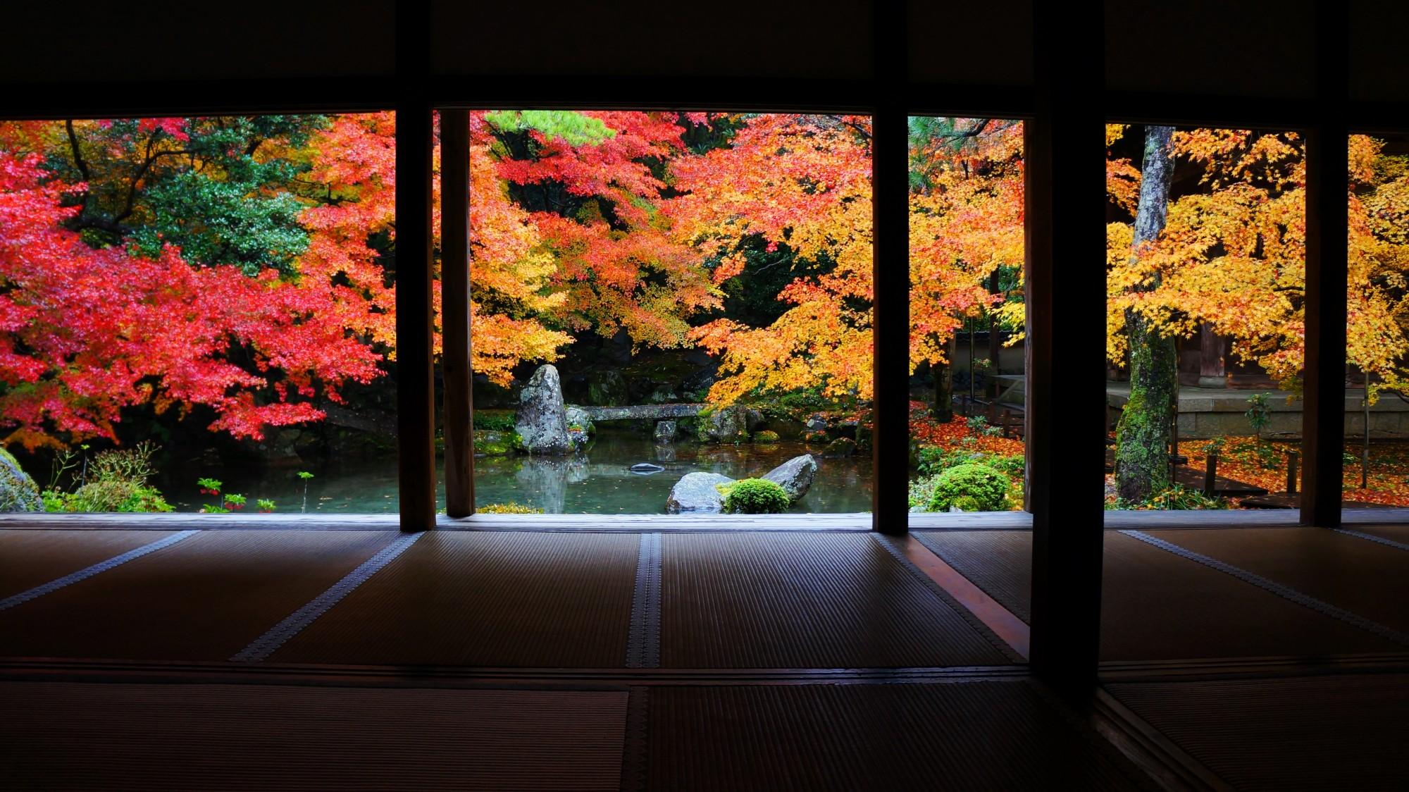蓮華寺 紅葉 極上の秋の彩り