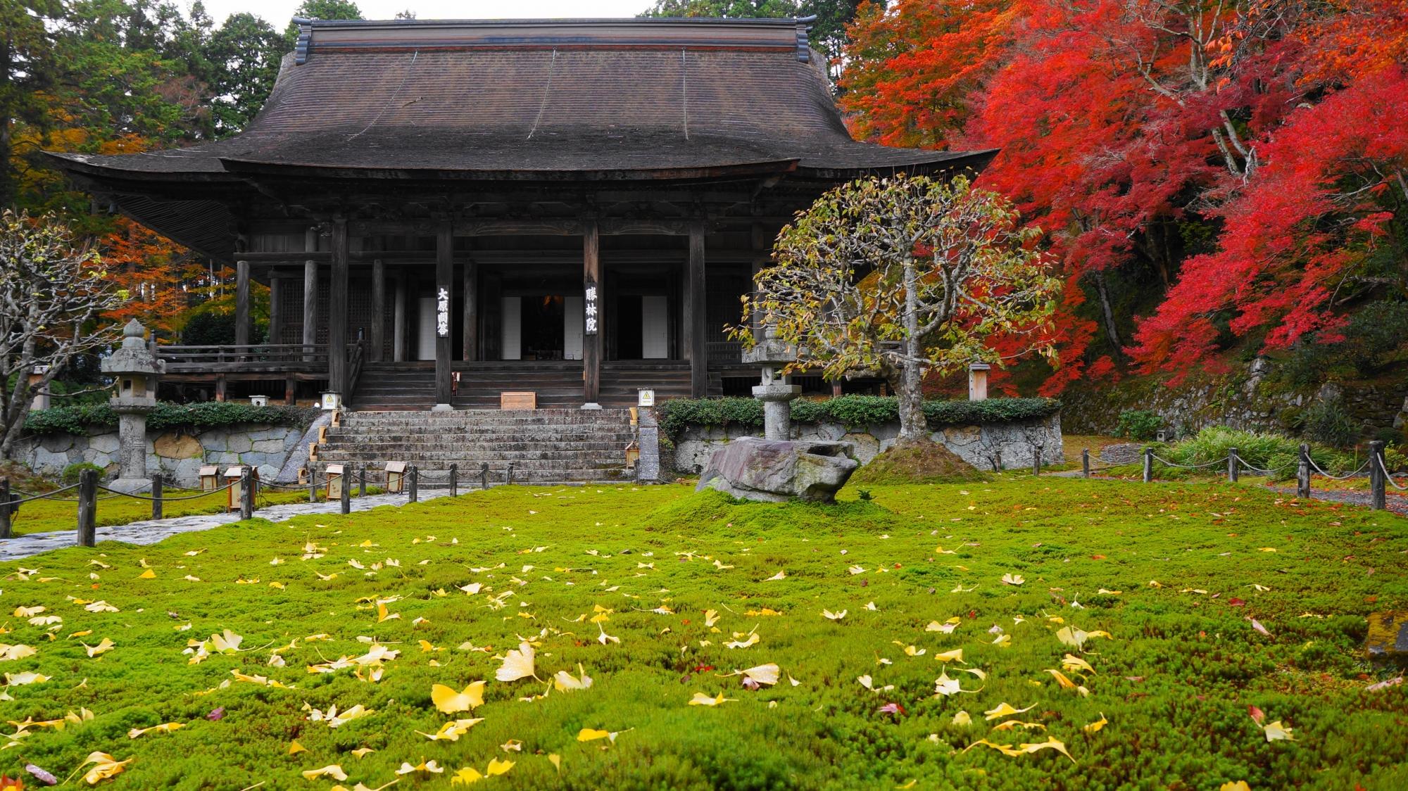 勝林院 紅葉 京都大原の綺麗な苔と真っ赤な紅葉
