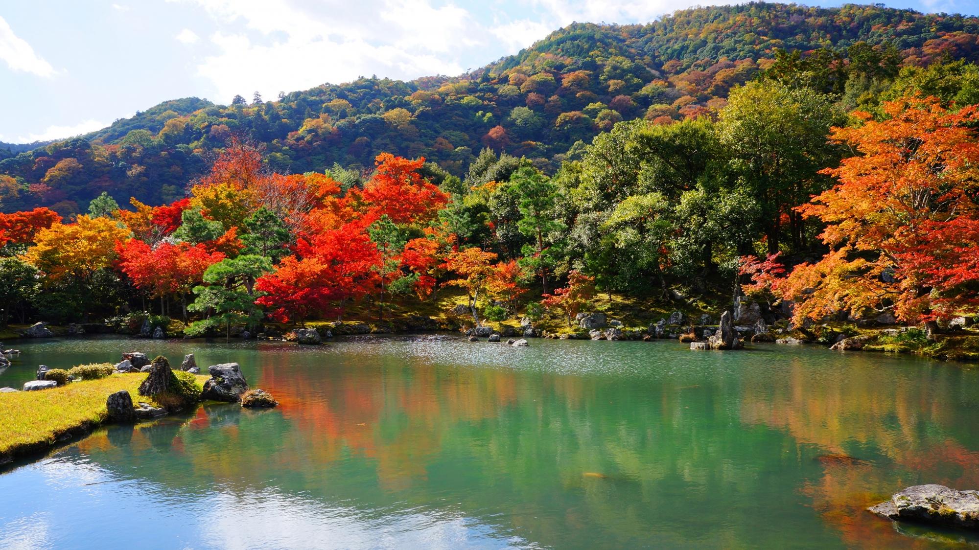 天龍寺 紅葉 嵐山の美しい庭園と鮮やかなもみじ