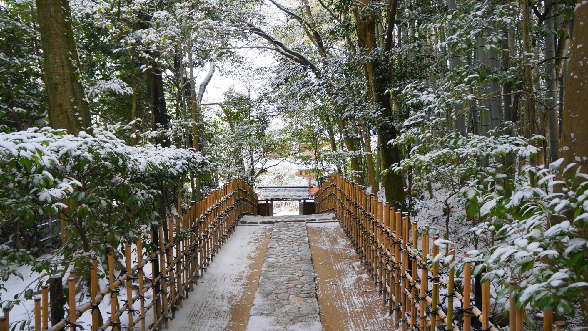 参道から眺めた雪の小有洞