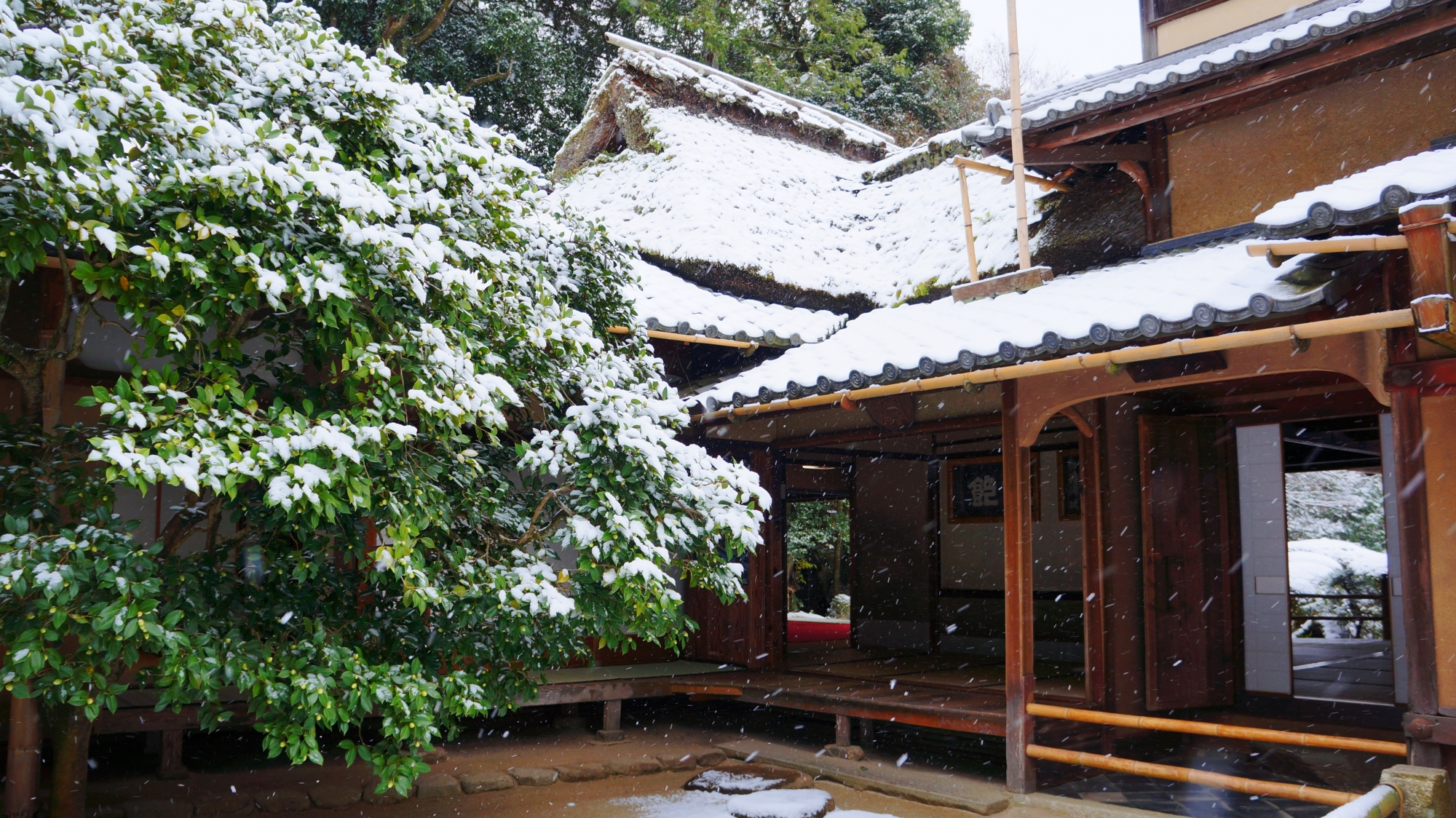 白くそまった建物と奥に見える庭園