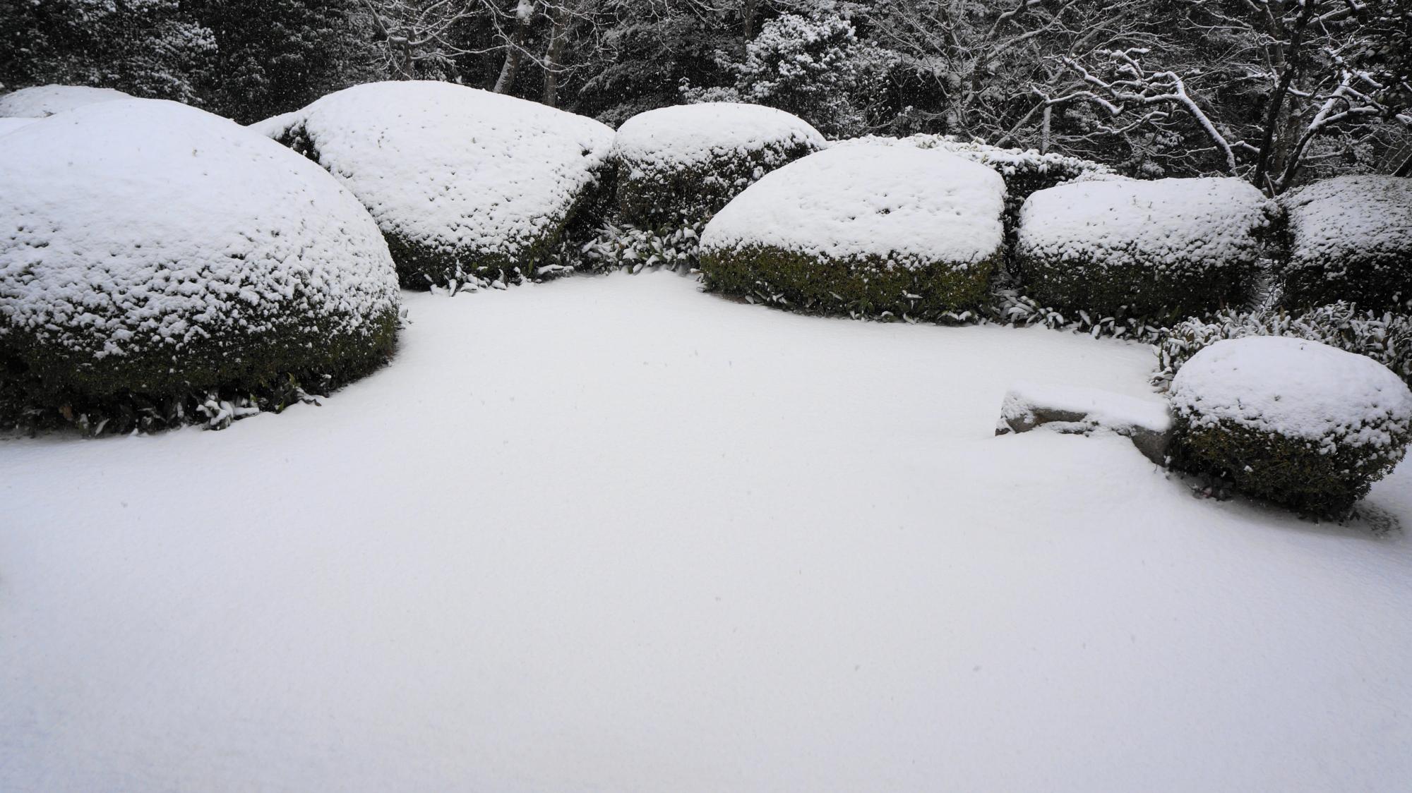 詩仙堂の圧巻の庭園の冬景色