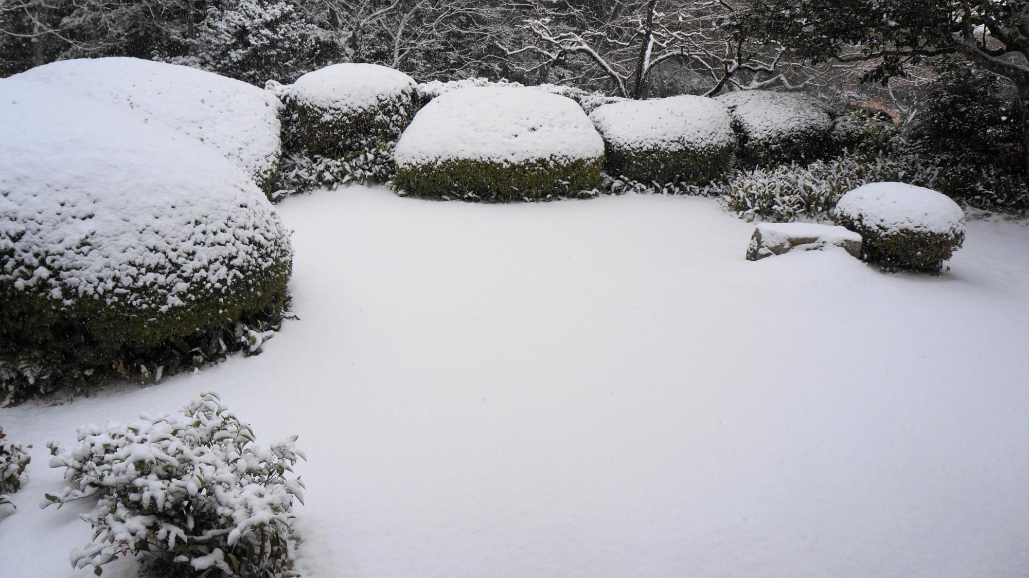綺麗に雪化粧した白砂