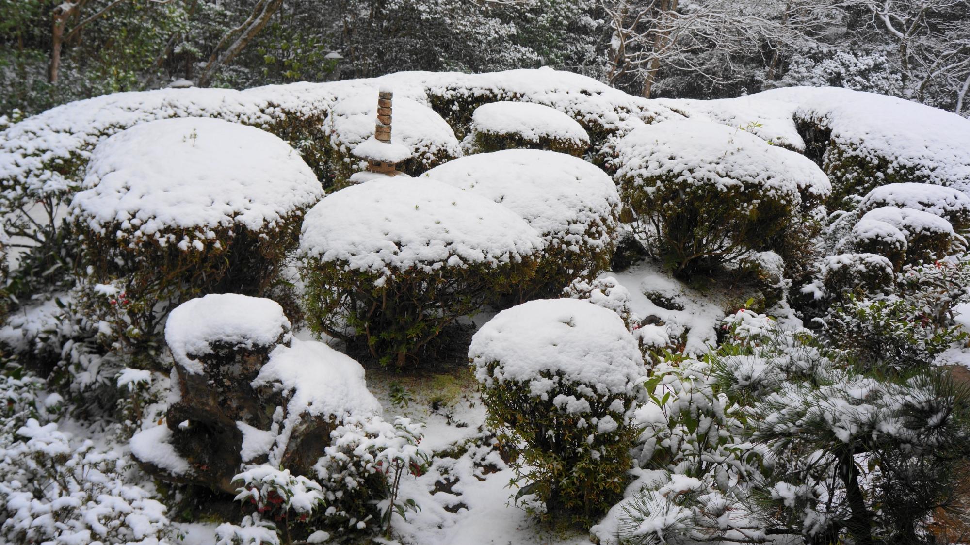 詩仙堂の庭園の雪景色