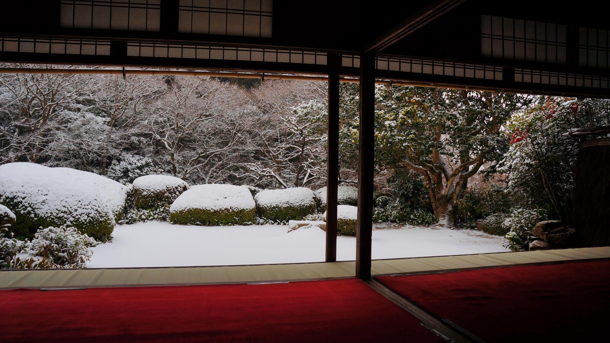 至楽巣(しらくそう)の雪景色